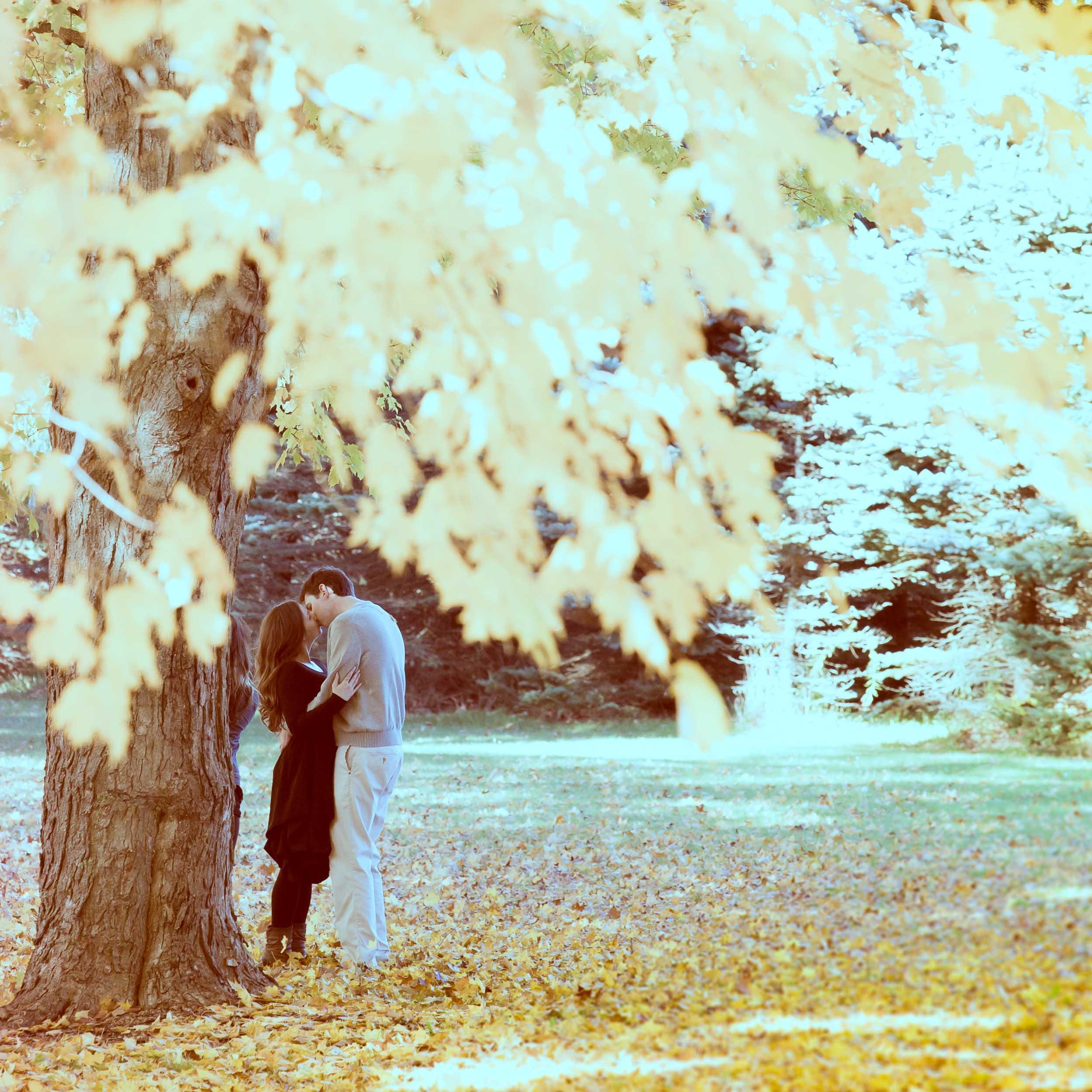 Love Story-1-3.jpg