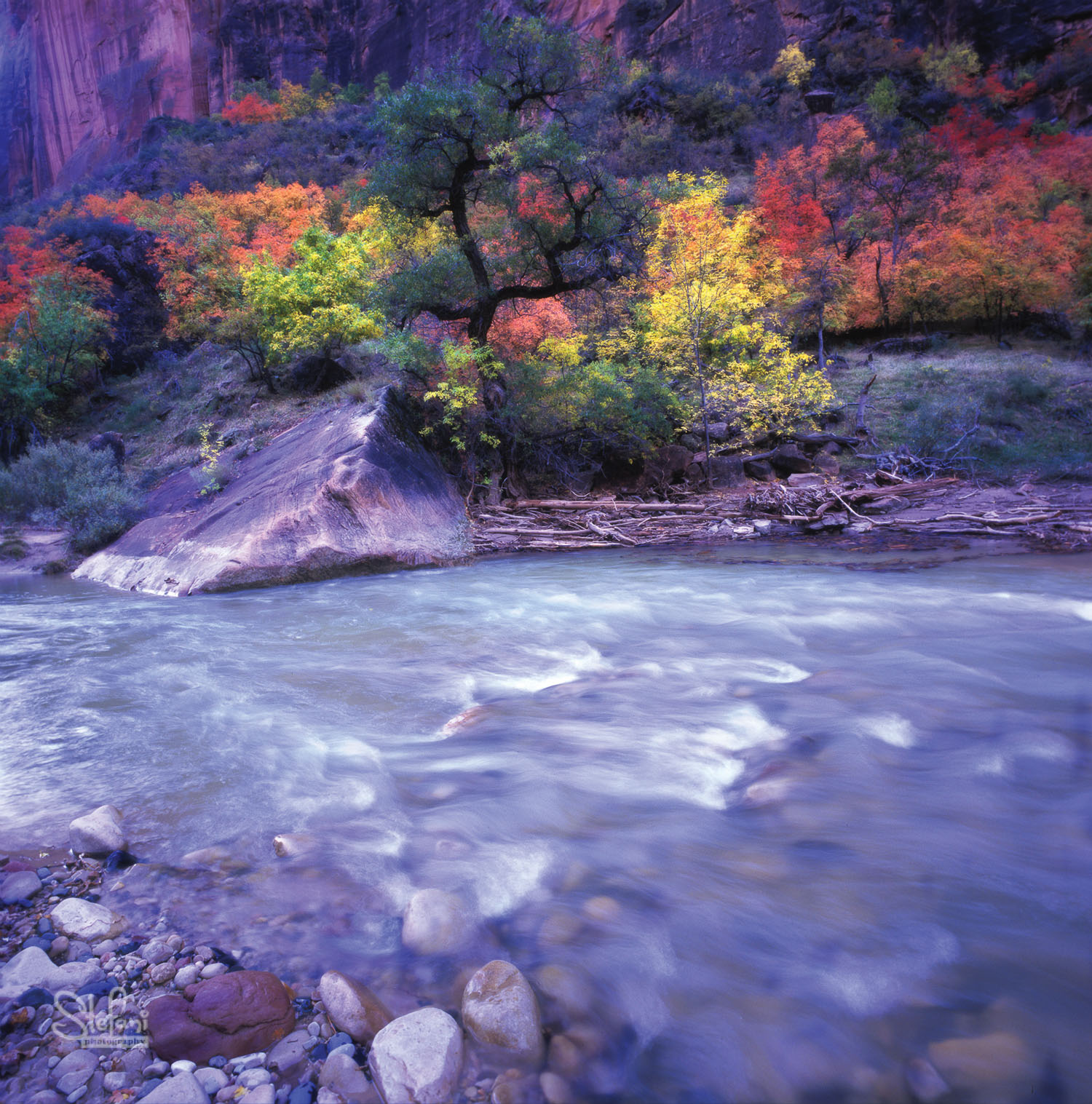 VIRGIN RIVER ZION
