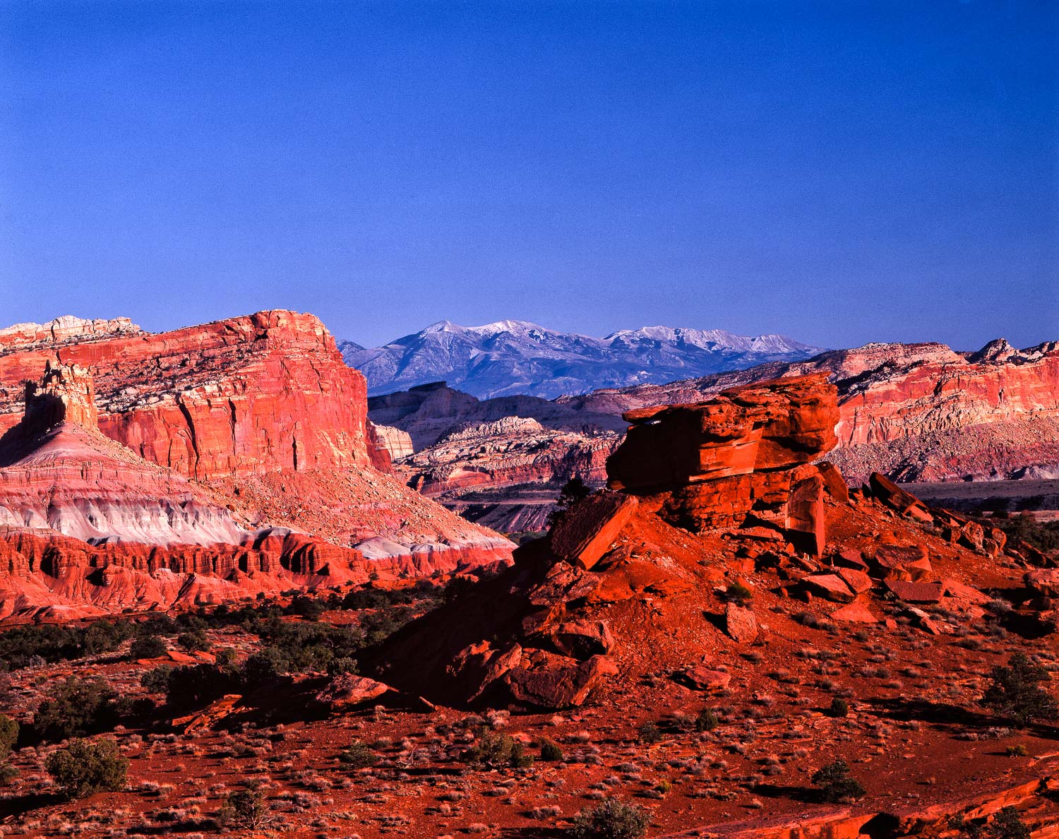PANORAMIC POINT CAPITOL REEF, UTAH