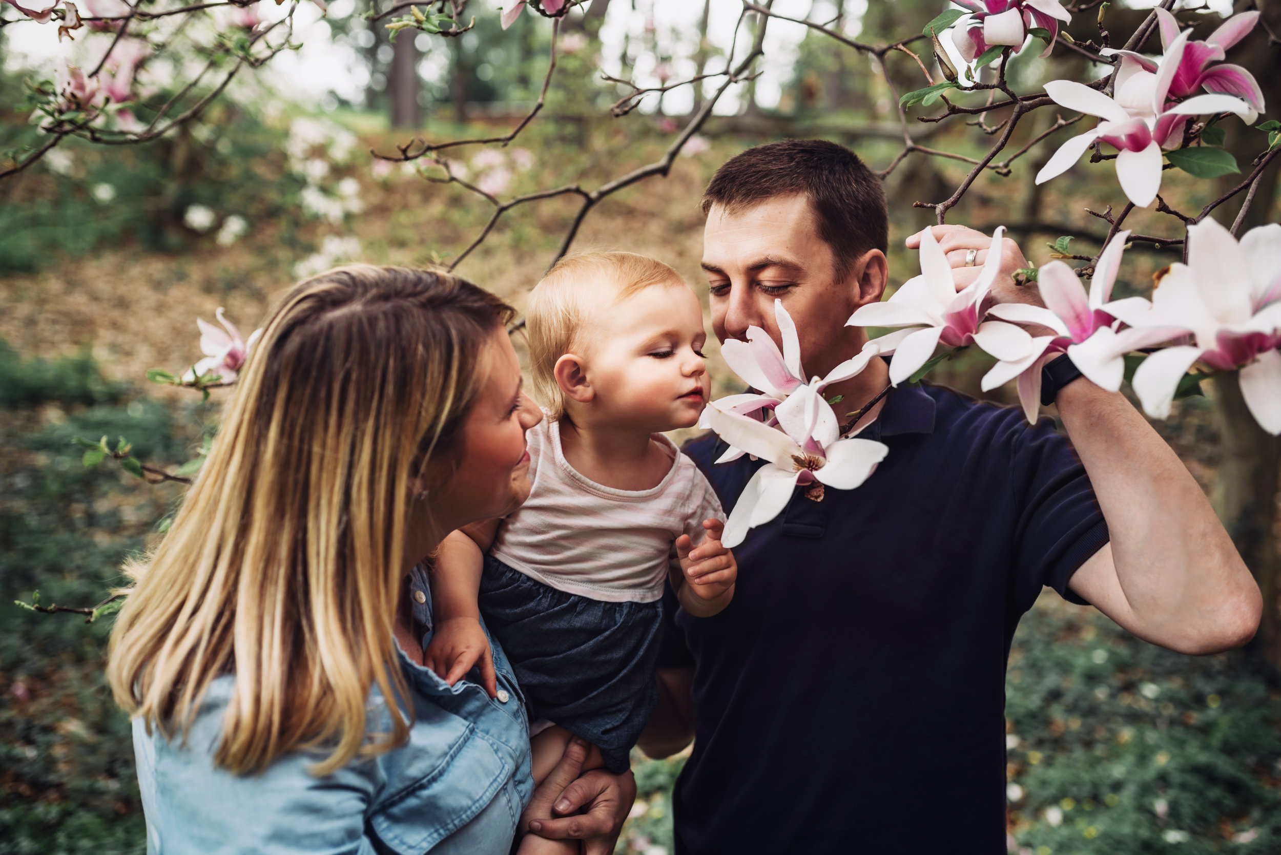 Sweet Spring Family Portrait Photos in Boston, MA