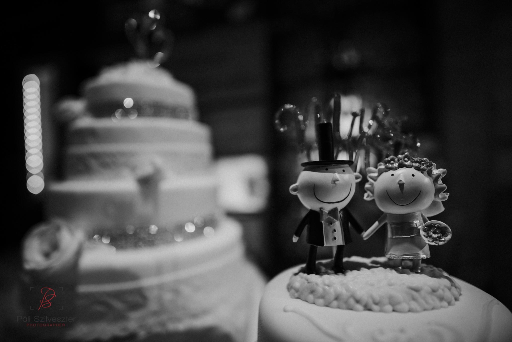 Páli-Szilveszter-székesfehérvári-esküvői-fotós-esztergom-prímás-pince-esüvőkiállítás-2016-01-23-70364.jpg