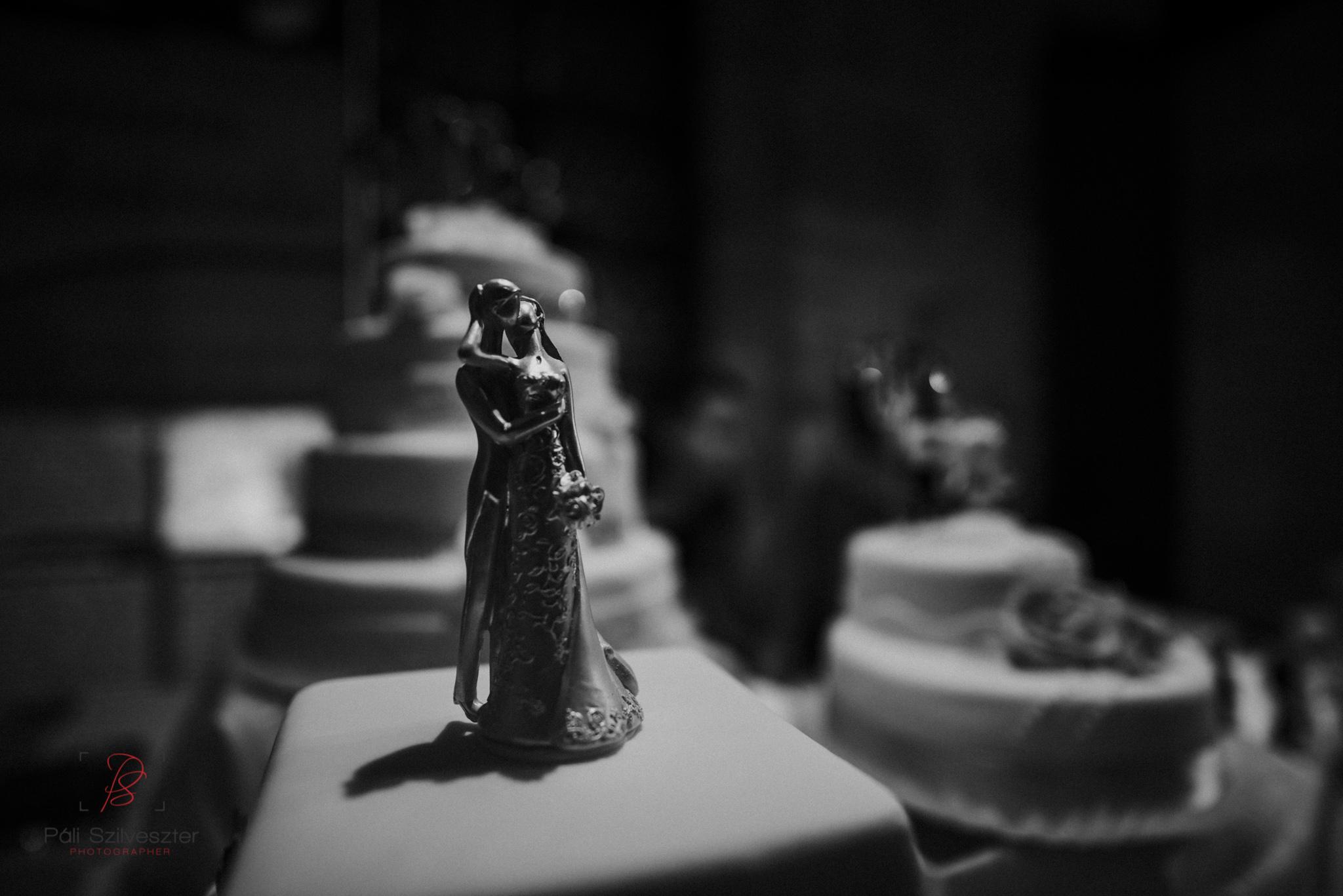 Páli-Szilveszter-székesfehérvári-esküvői-fotós-esztergom-prímás-pince-esüvőkiállítás-2016-01-23-70363.jpg
