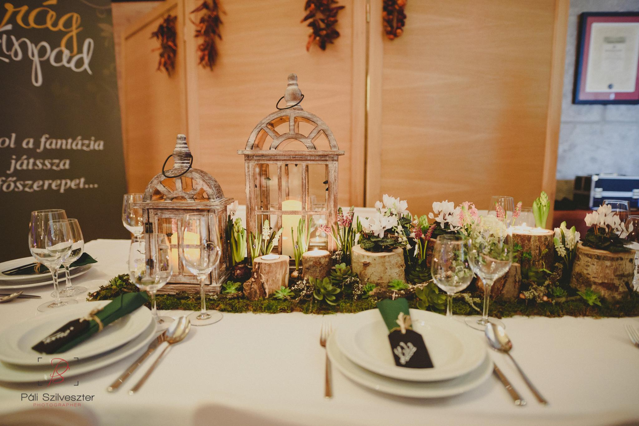 Páli-Szilveszter-székesfehérvári-esküvői-fotós-esztergom-prímás-pince-esüvőkiállítás-2016-01-23-70387.jpg