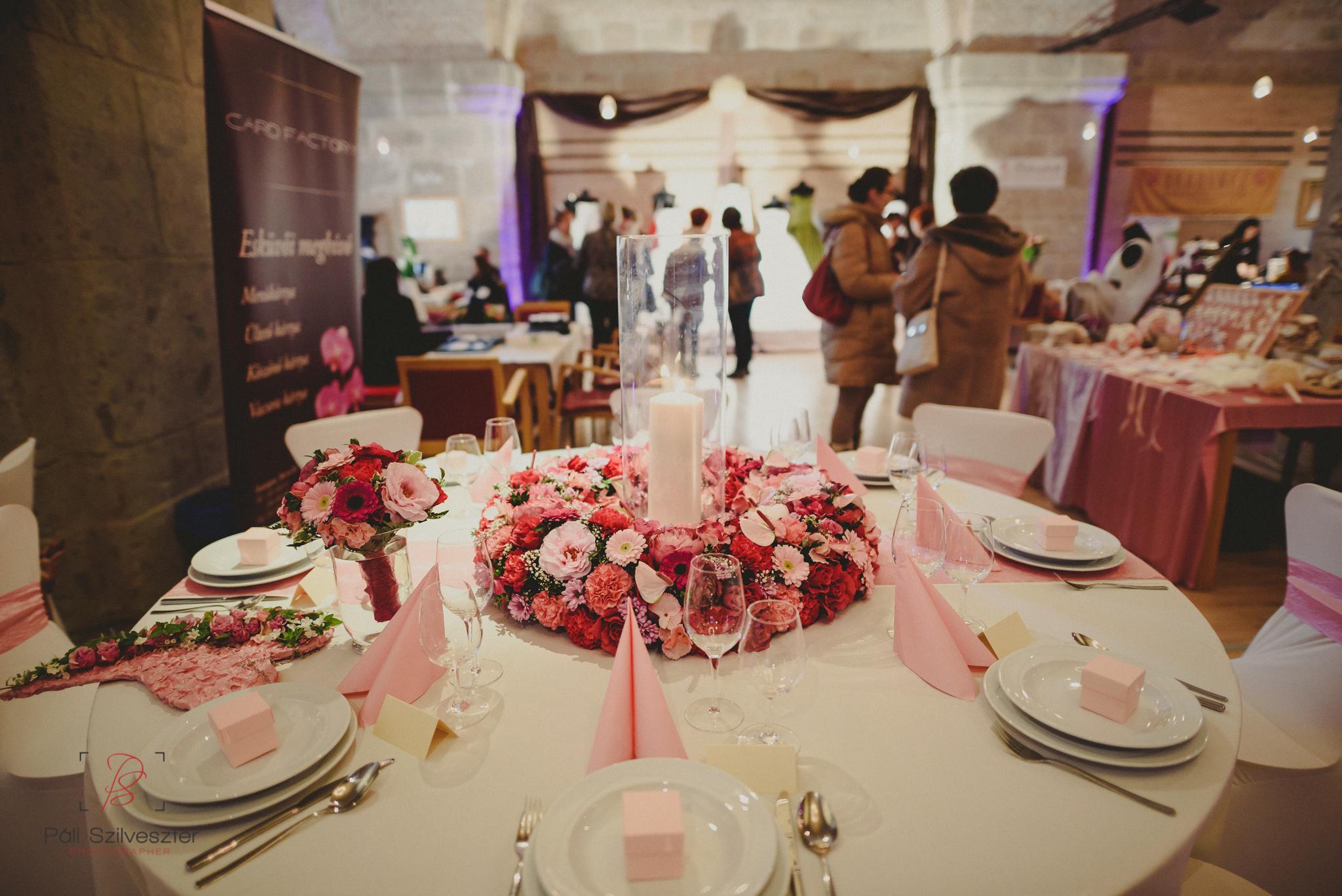 Páli-Szilveszter-székesfehérvári-esküvői-fotós-esztergom-prímás-pince-esüvőkiállítás-2016-01-23-70389.jpg