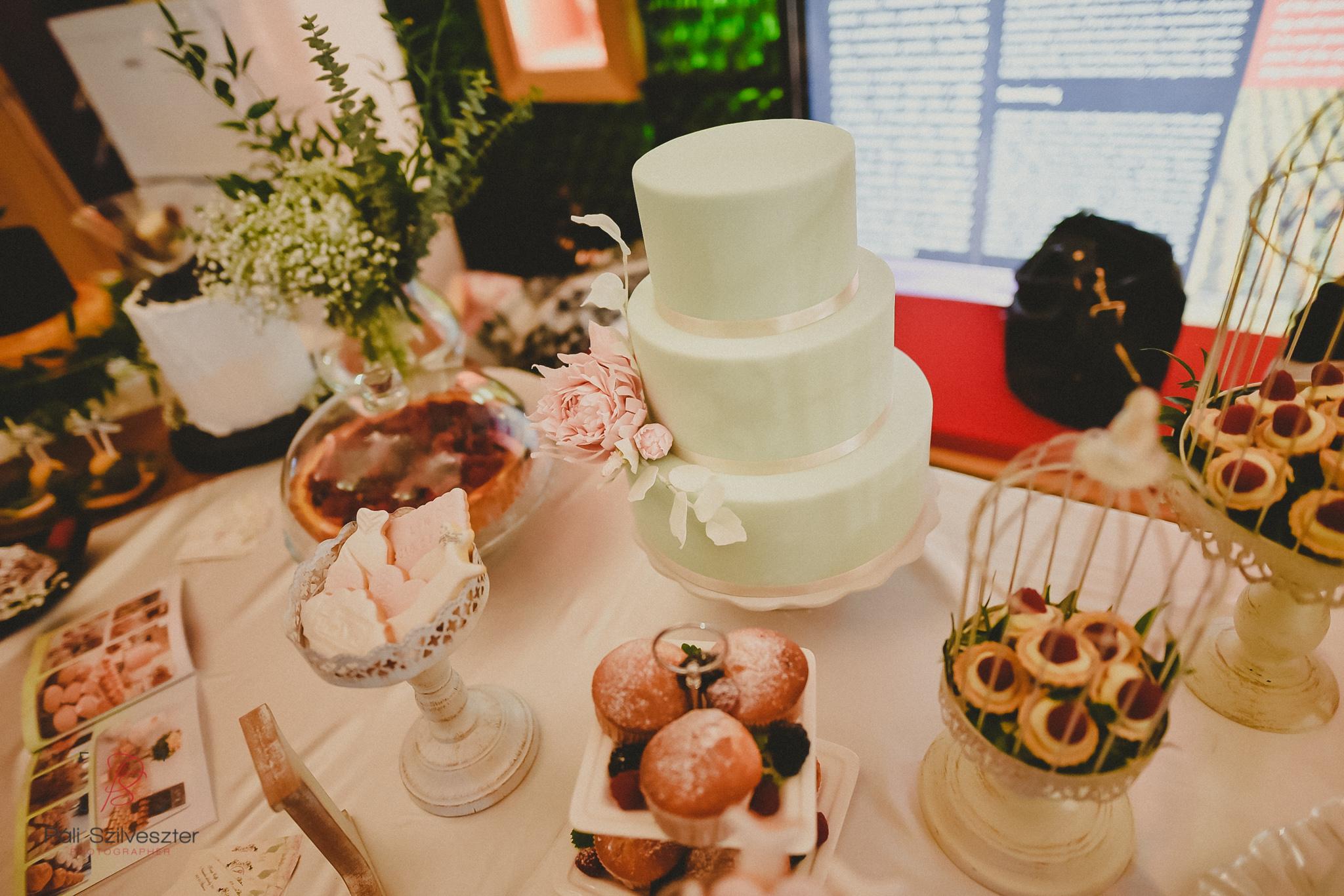 Páli-Szilveszter-székesfehérvári-esküvői-fotós-esztergom-prímás-pince-esüvőkiállítás-2016-01-23-70437.jpg