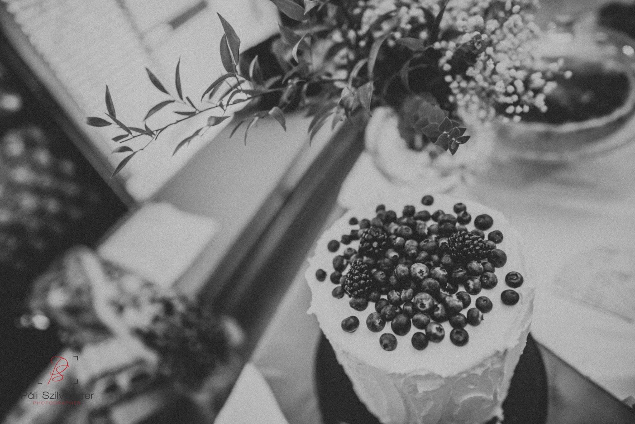 Páli-Szilveszter-székesfehérvári-esküvői-fotós-esztergom-prímás-pince-esüvőkiállítás-2016-01-23-70439.jpg
