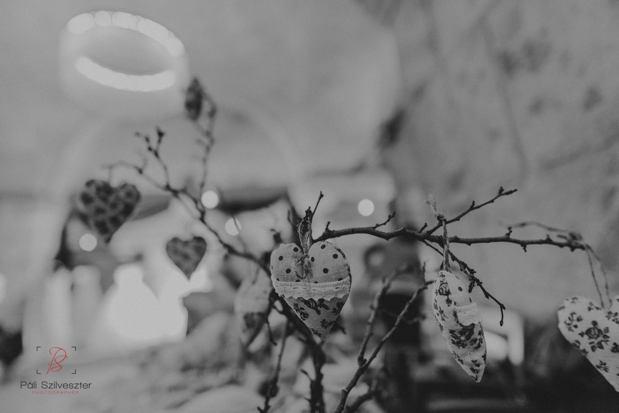 Páli-Szilveszter-székesfehérvári-esküvői-fotós-esztergom-prímás-pince-esüvőkiállítás-2016-01-23-70470.jpg