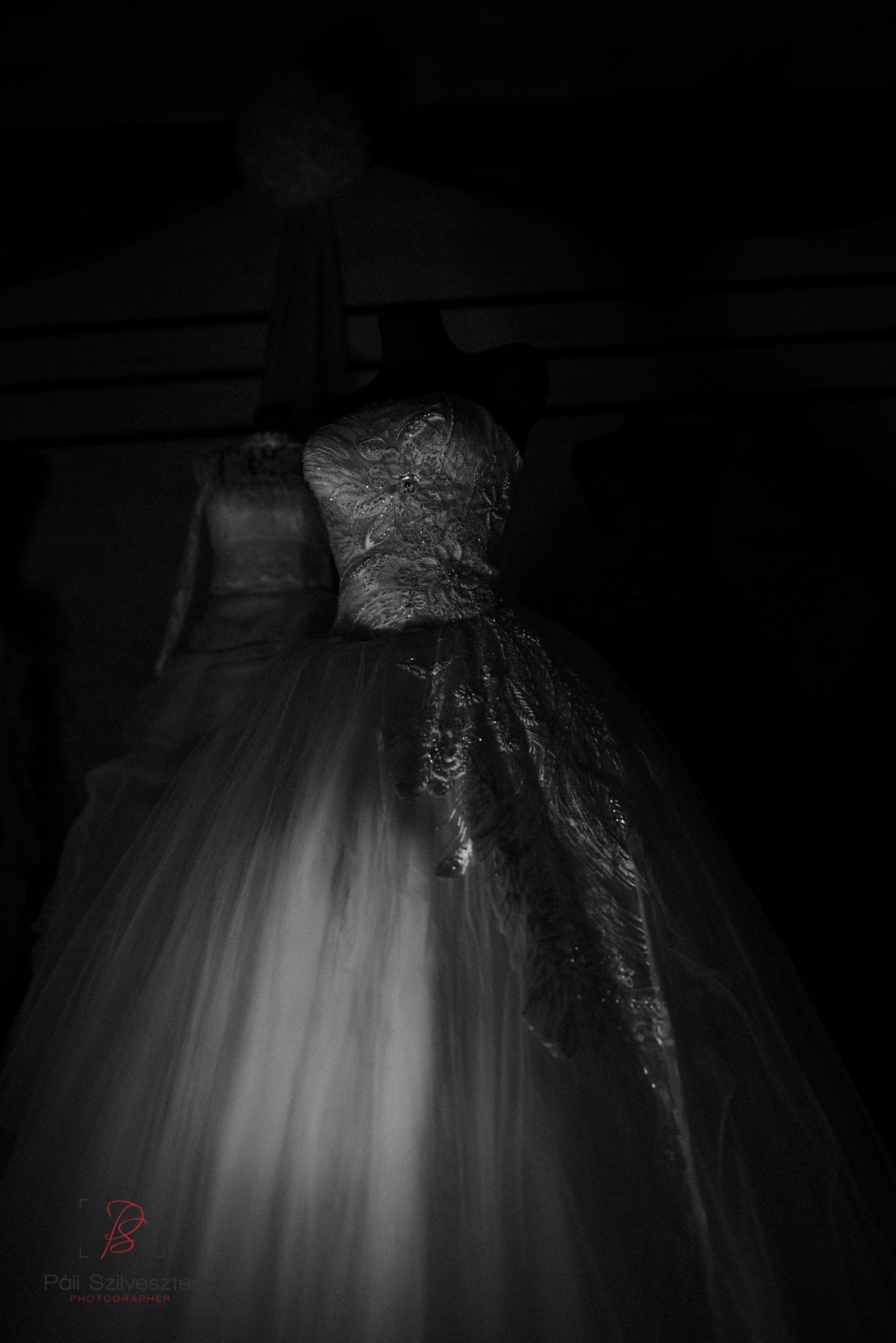 Páli-Szilveszter-székesfehérvári-esküvői-fotós-esztergom-prímás-pince-esüvőkiállítás-2016-01-23-70474.jpg