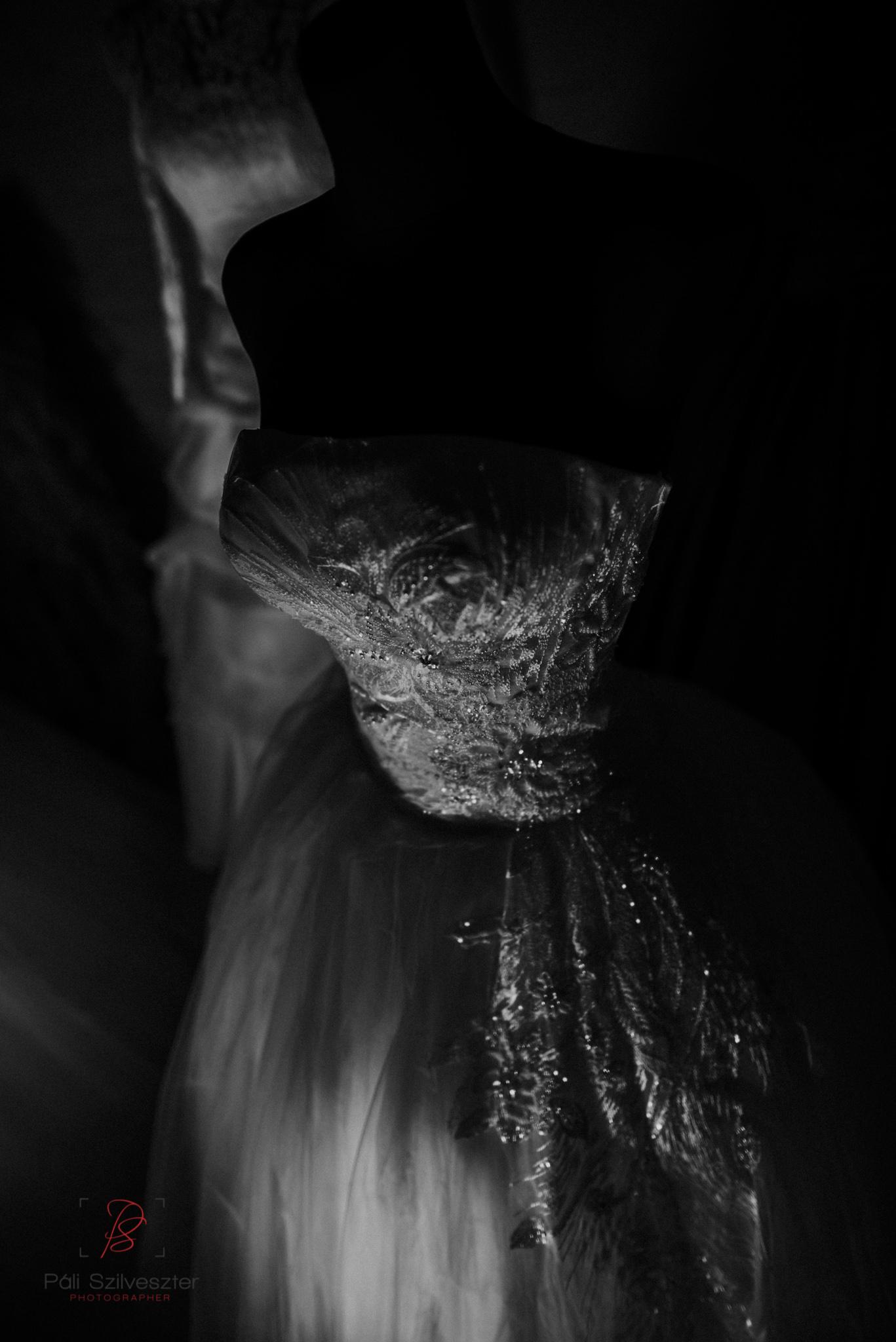 Páli-Szilveszter-székesfehérvári-esküvői-fotós-esztergom-prímás-pince-esüvőkiállítás-2016-01-23-70480.jpg