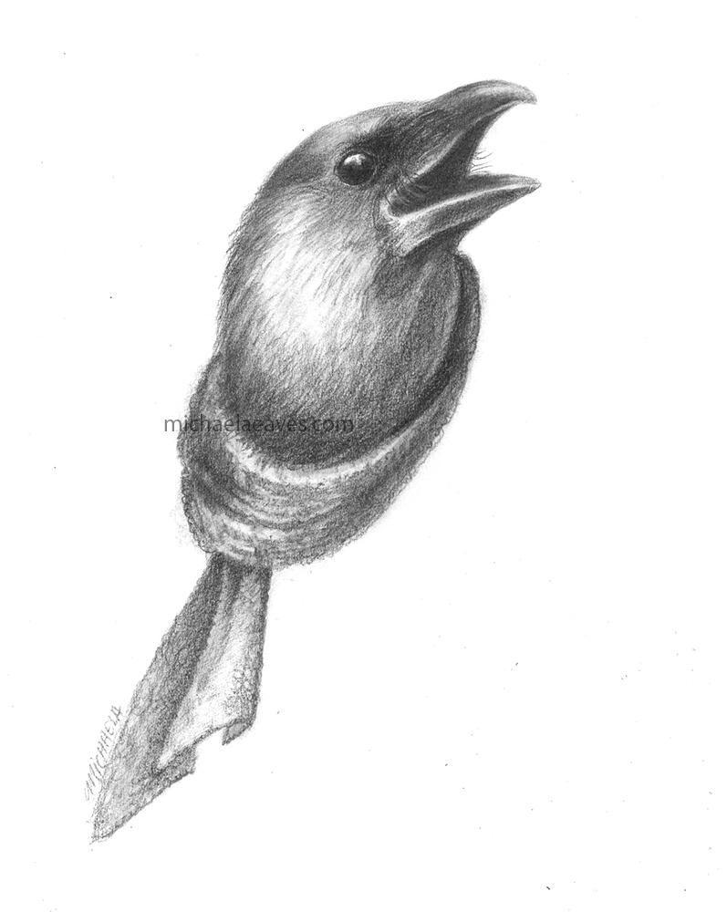 ravenScarf_72.jpg