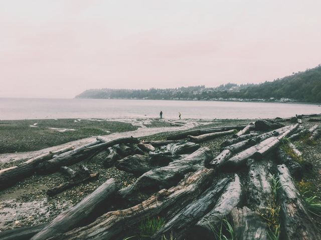 Found Seattle  #adventure #vista #pacific #foggy #vscocam #vsco #pnw