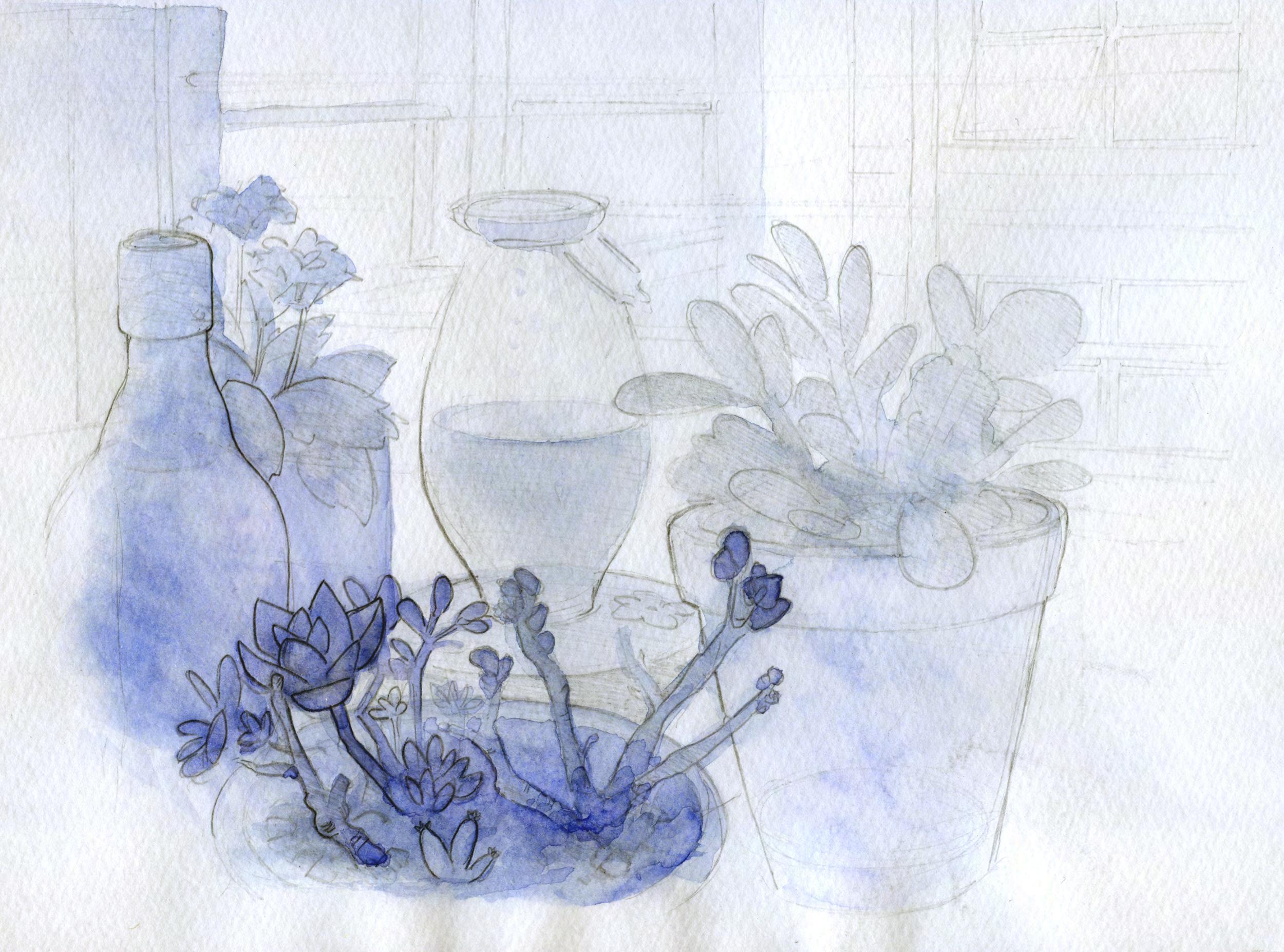 plants01.png