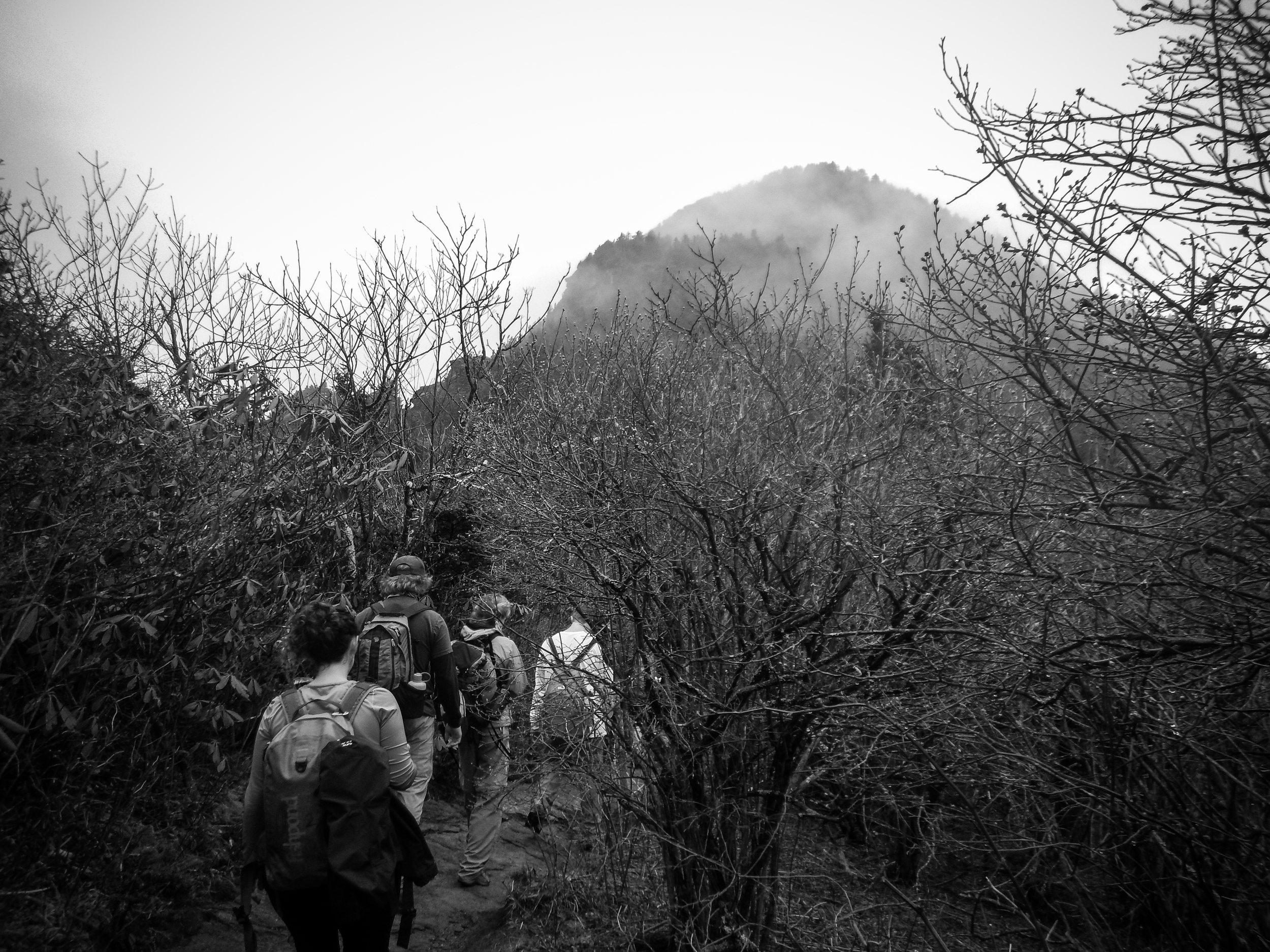 The group approaches a cloud-cloaked McCrae Peak.
