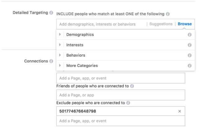 Screenshot of Facebook Ads' custom audience feature.