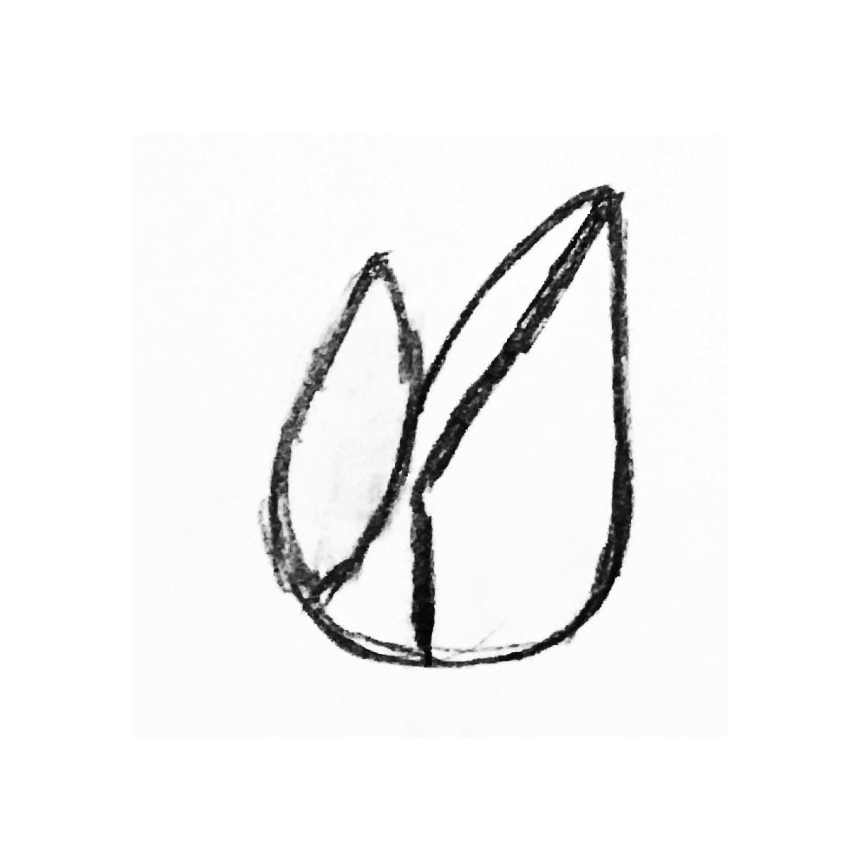 logo sketches2.jpg