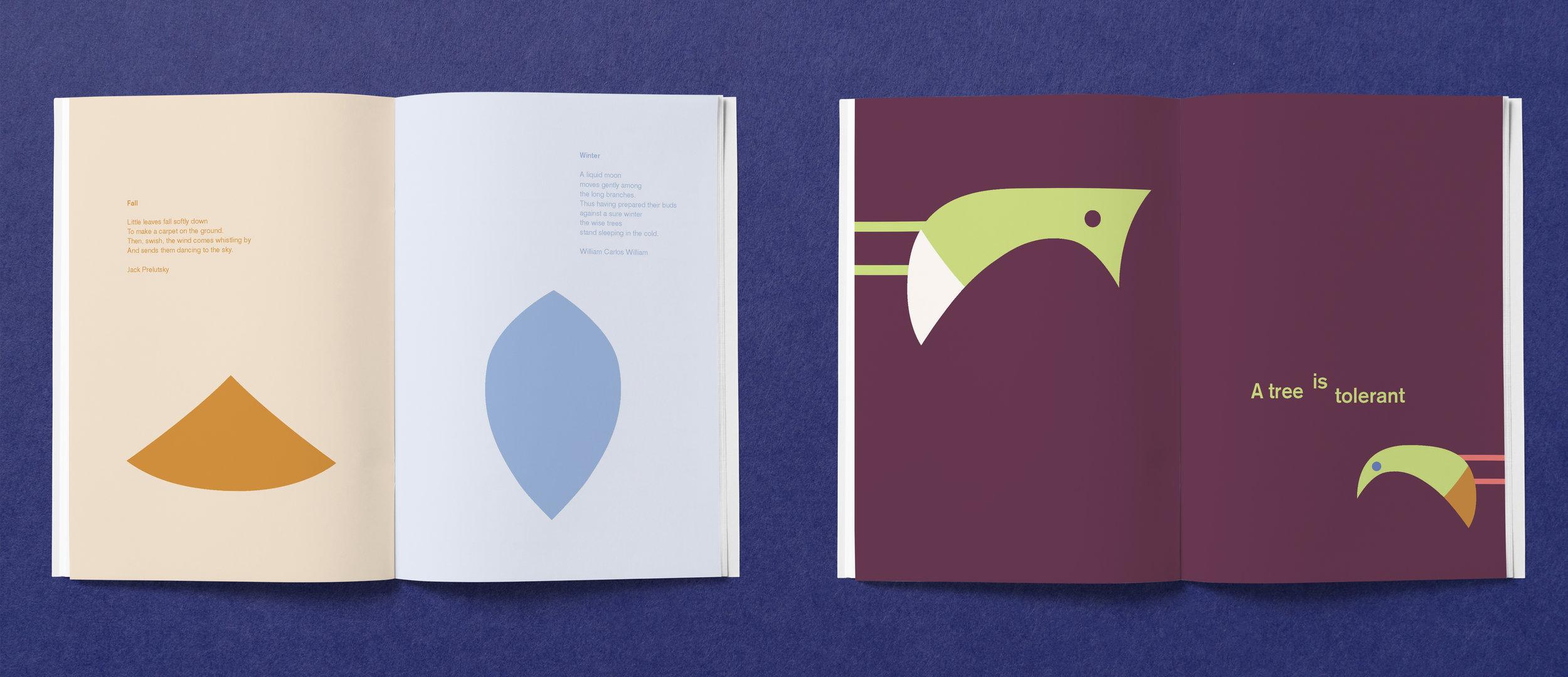 book content 2.jpg