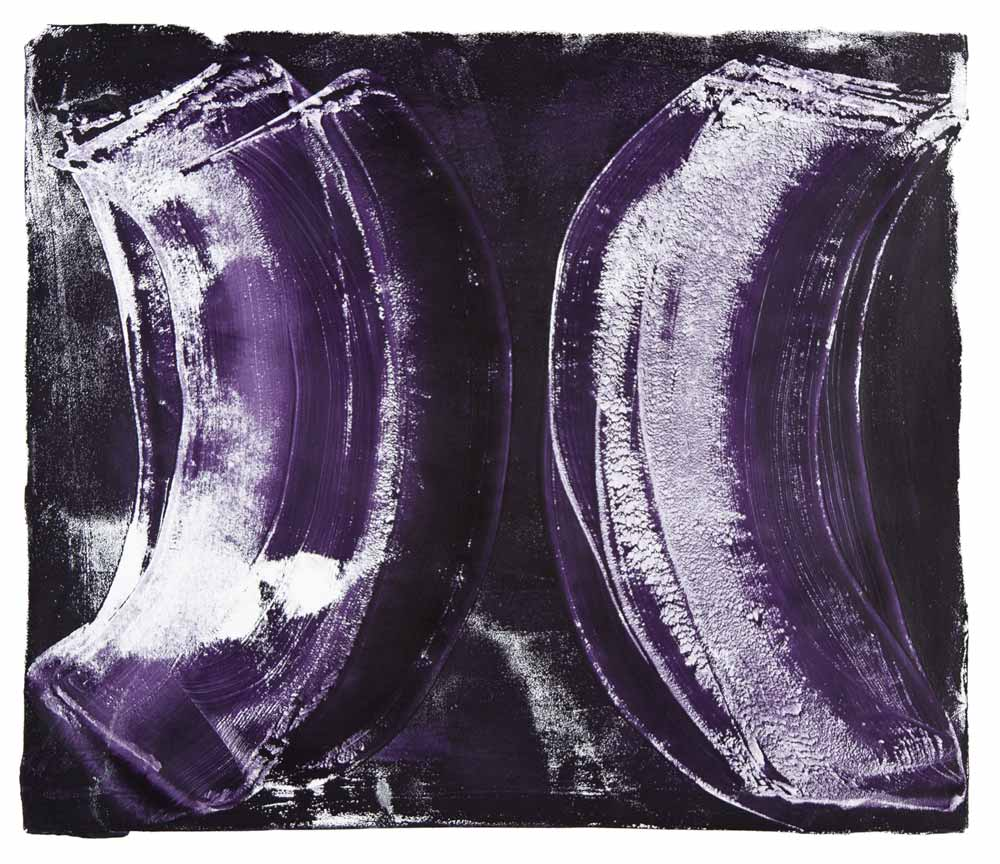 Ribs 4,  2017 Monotype Image 12 x 14 in. Sheet 16 x 18 in.