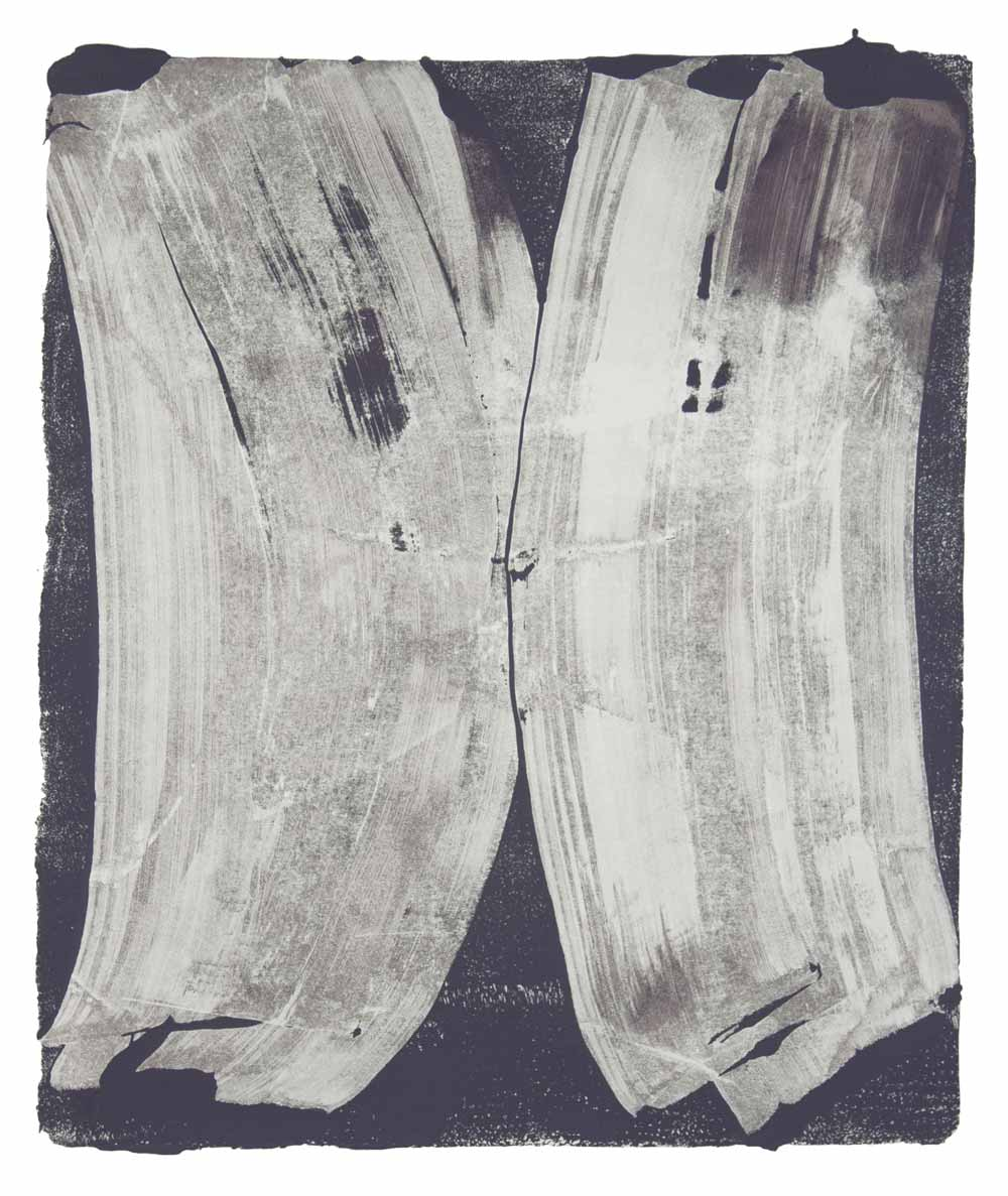 Ribs 9,  2017 Monotype Image 14 x 12 in. Sheet 18 x 16 in.