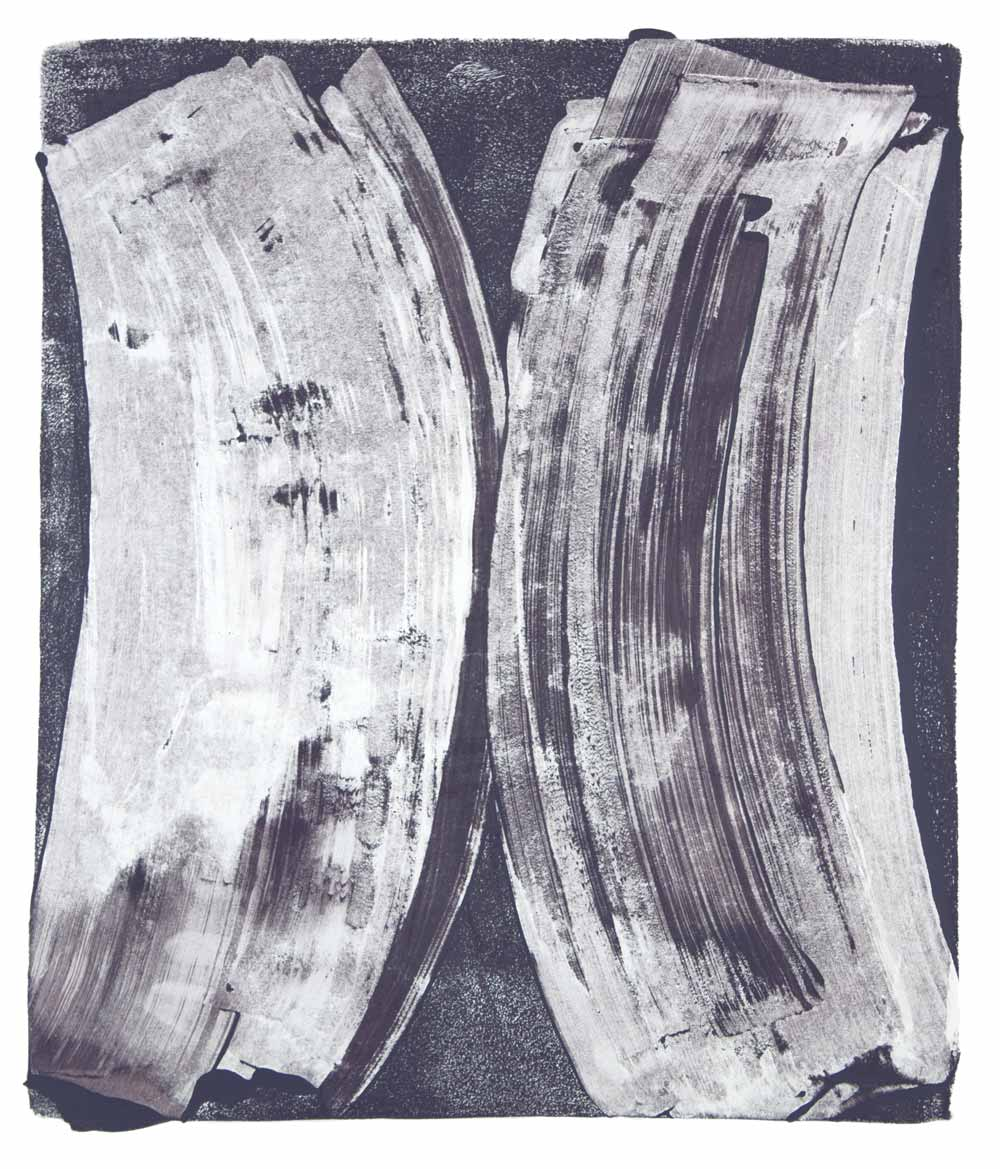 Ribs 10,  2017 Monotype Image 14 x 12 in. Sheet 18 x 16 in.  Available at Zeuxis:  https://zeuxis-art.com/en/paintings/2815-ribs-10.html