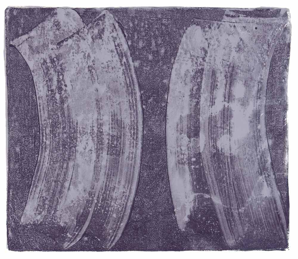 Ribs 13,  2017 Monotype Image 12 x 14 in. Sheet 16 x 18 in.