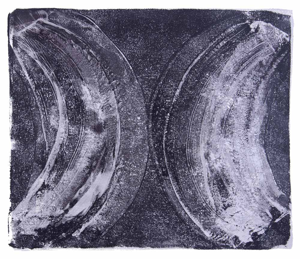 Ribs 15,  2017 Monotype Image 12 x 14 in. Sheet 16 x 18 in.