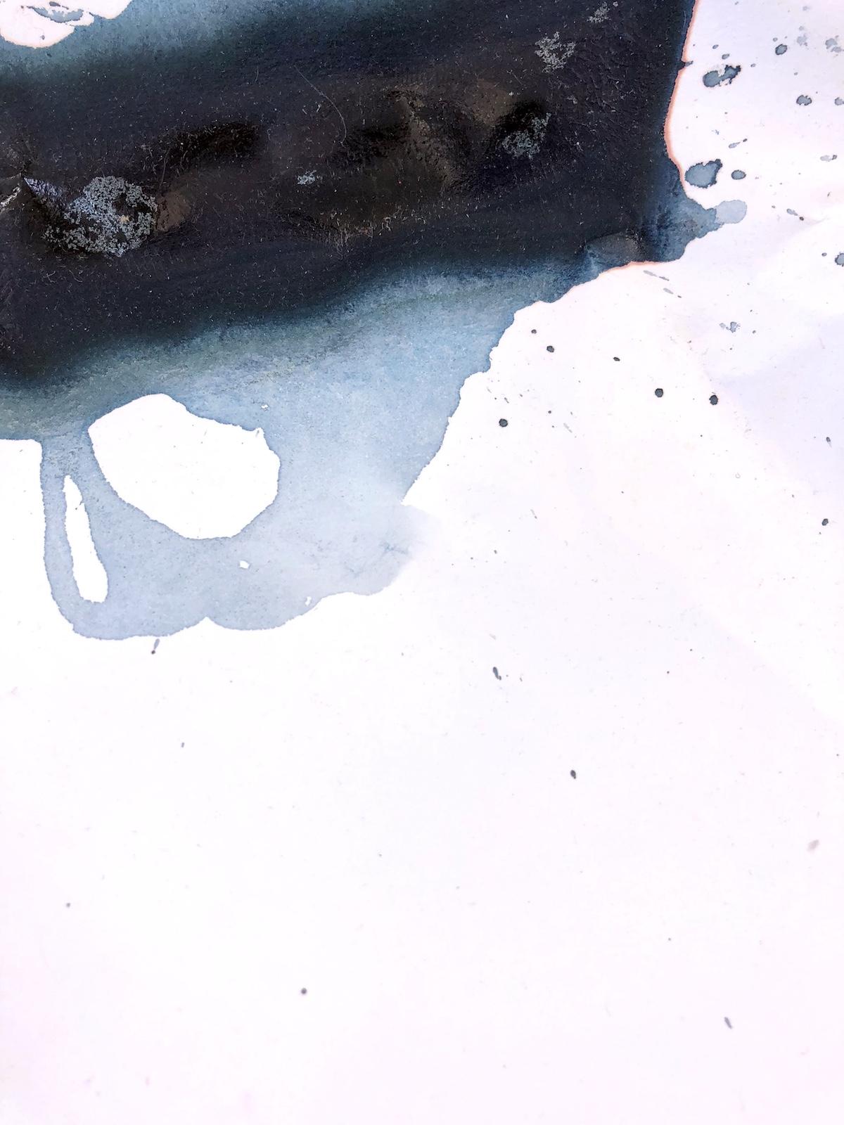 Recreating Zealandia, no. 2 (detail)
