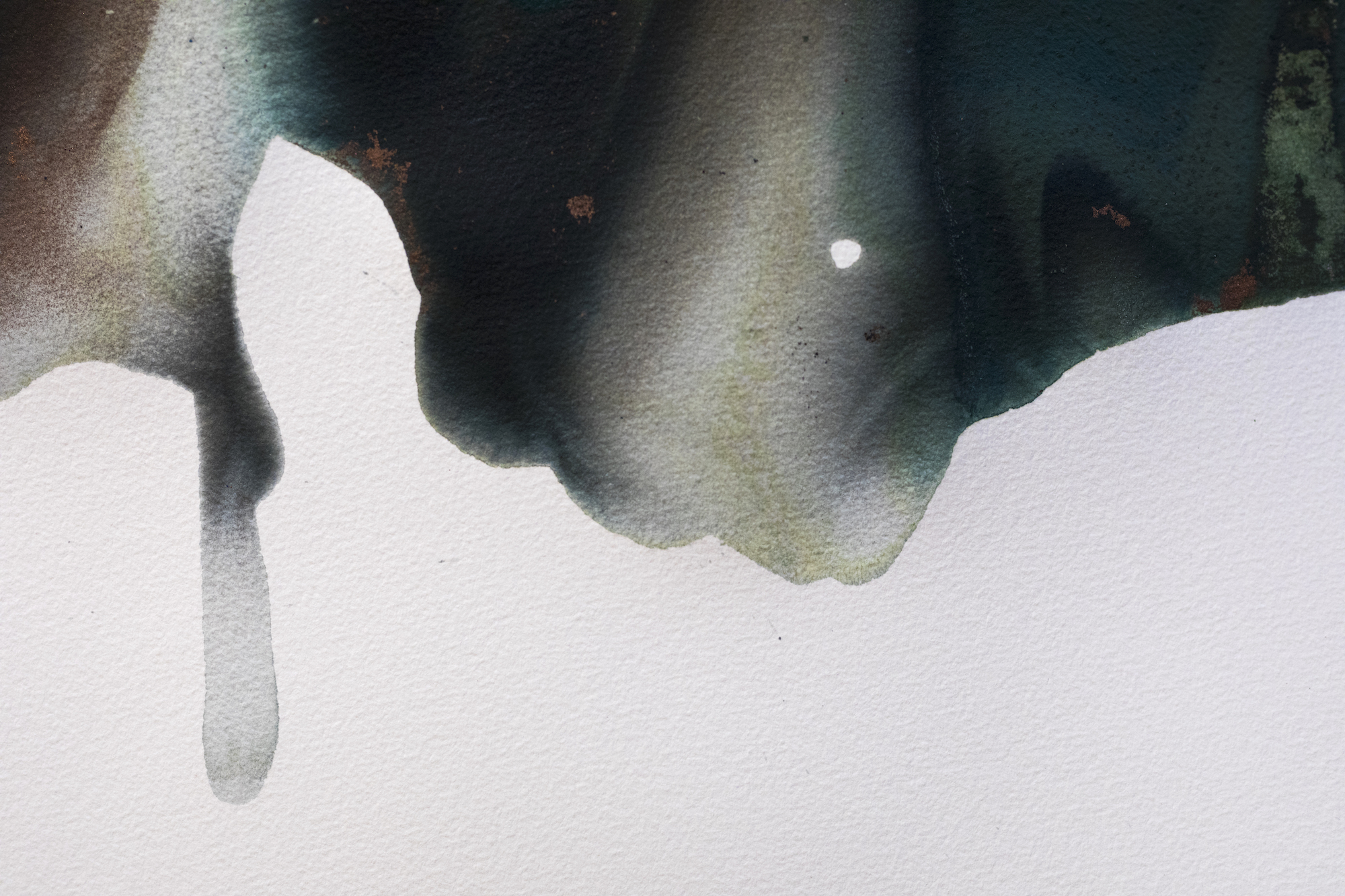 Seas and Turtle, No. 2, Birth (detail)