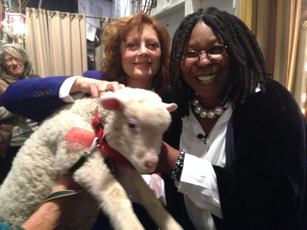 Susan-Sarandon-and-Whoopi-Goldberg-with-sheep-for-Heifer-International-segment-on-The-View1-1024x768.jpg