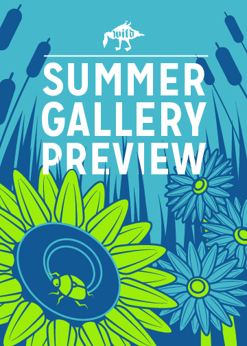 Summer Gallery Preview Front (2018)