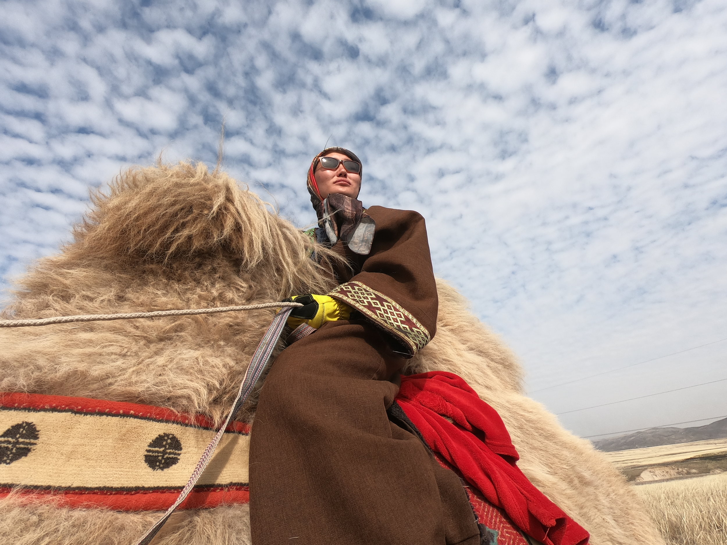 BBC (May 2019) - The woman travelling 12,000 km by camel - Story filmed in Kazakhstan for BBC Reel: Baigalmaa Norjmaa defies all odds by leading a herd of camels over an incredible 12,000km journey from Mongolia to London, UK.
