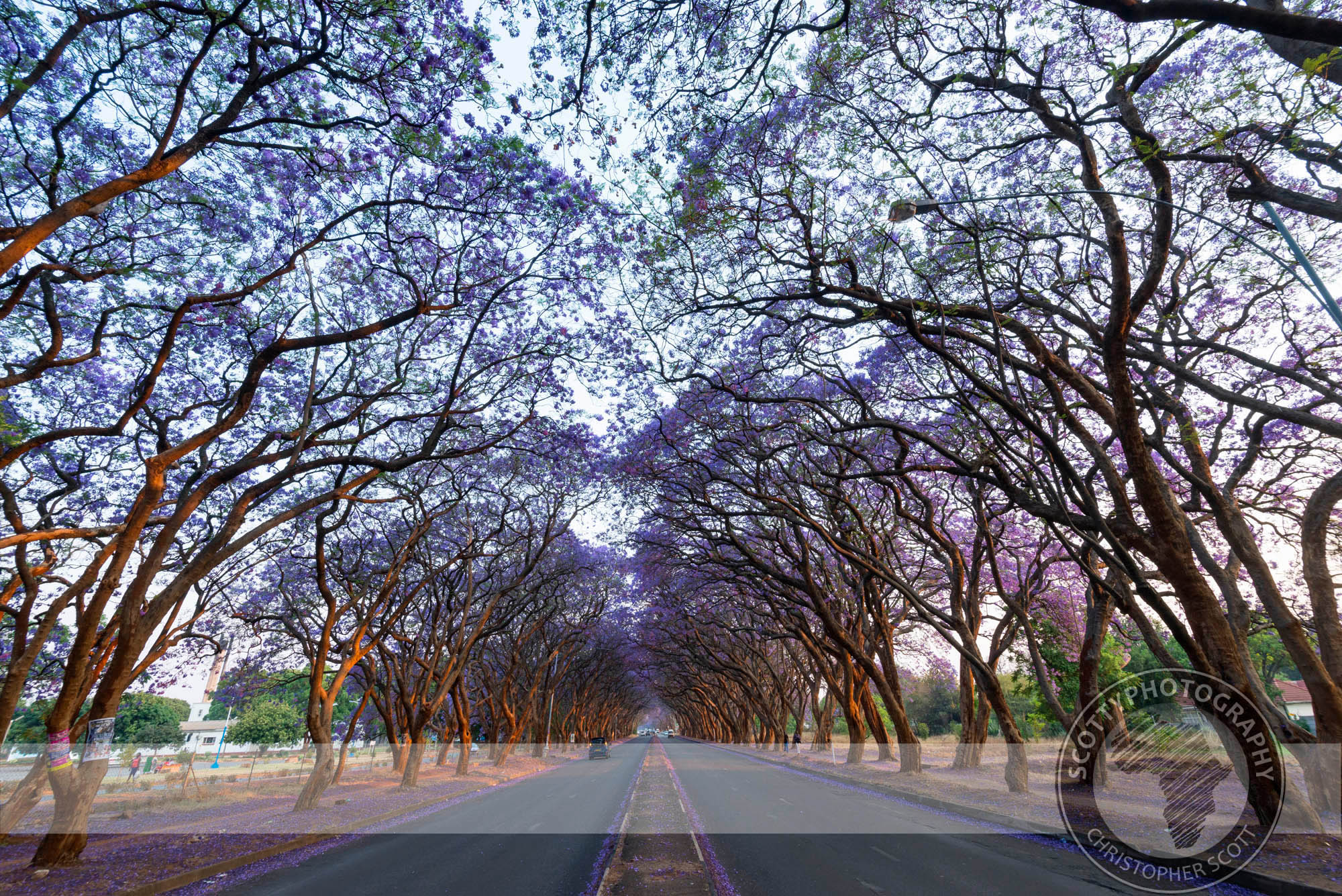 Harare-1313 (1).jpg