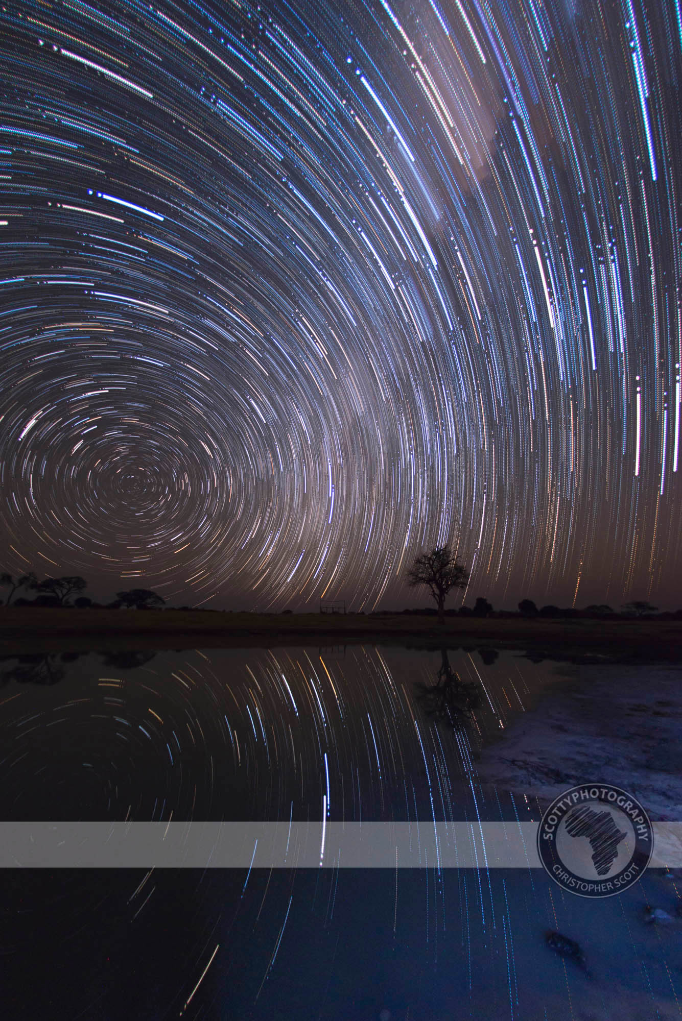 Hwange star trail.jpg