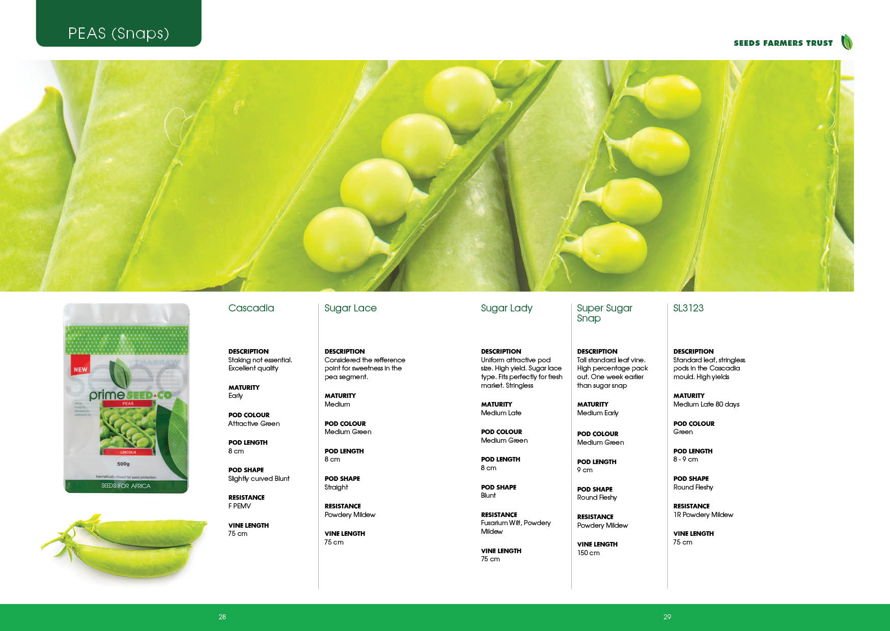 Prime Seed Catalogue A515.jpg