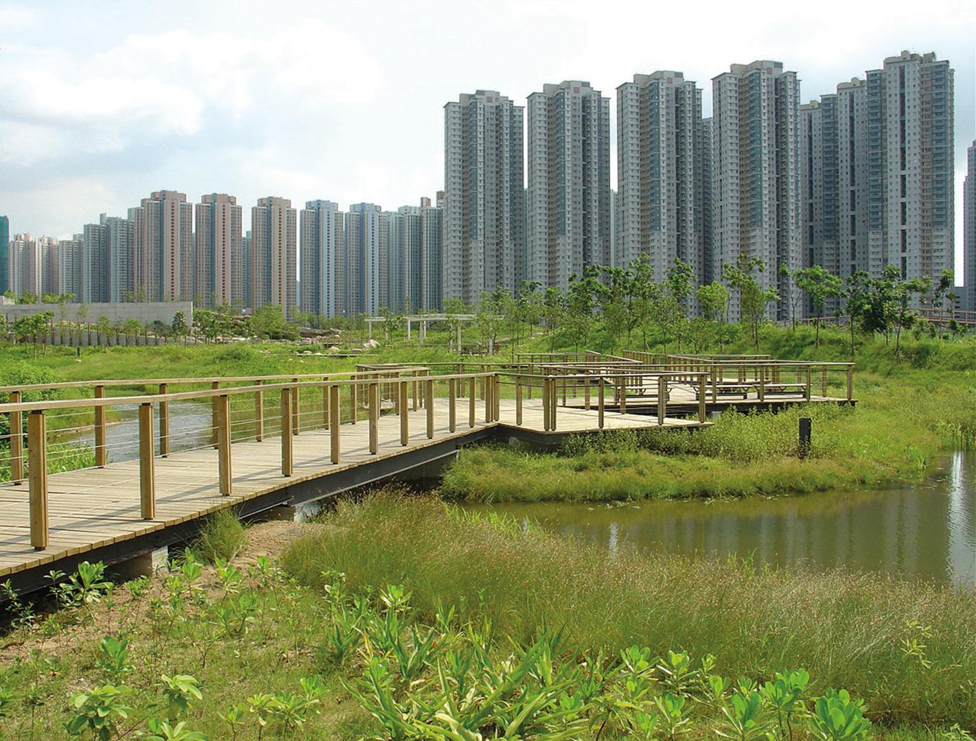 Wetland-Park_DSC08536.jpg