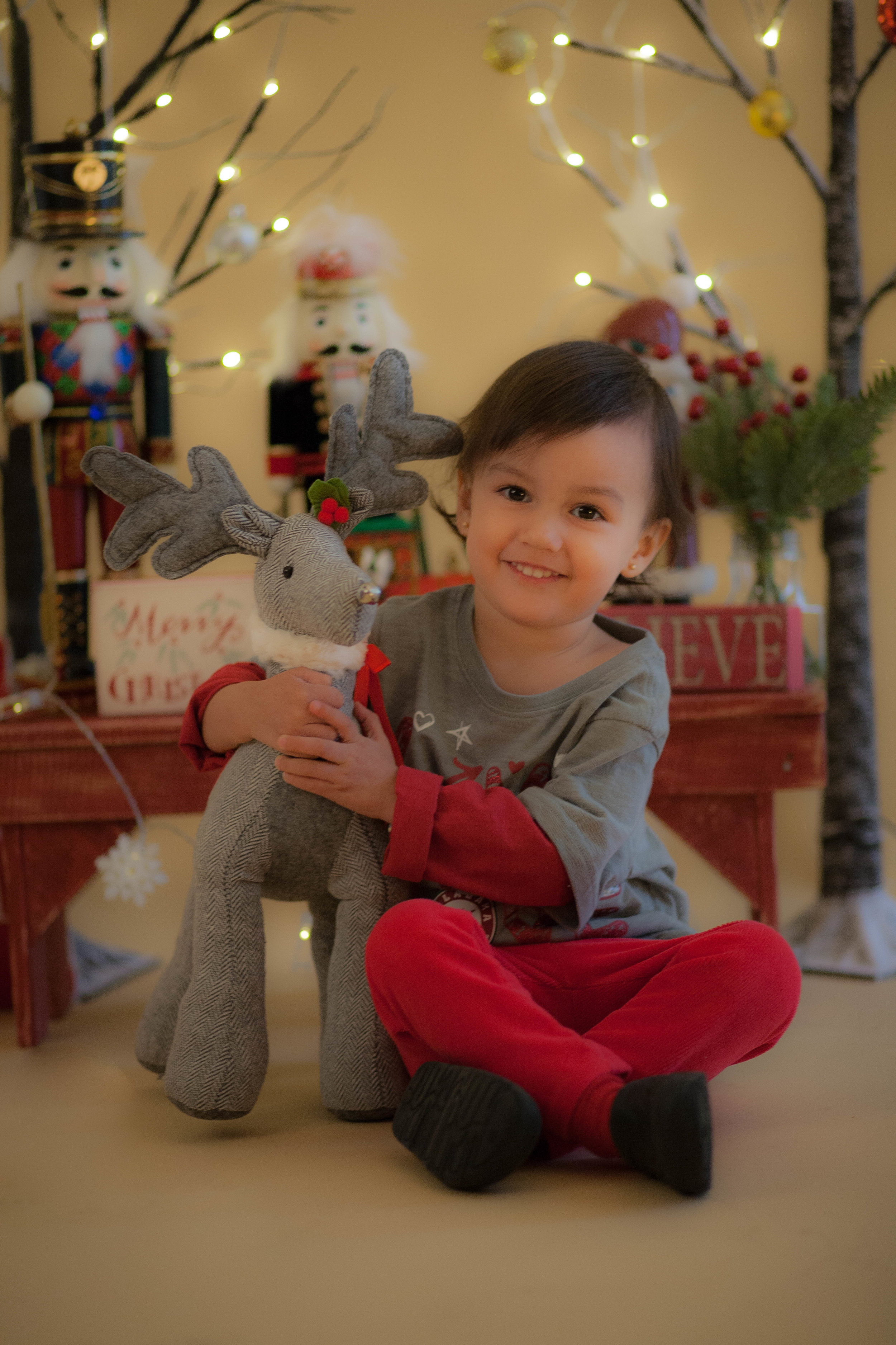 chicago holiday portrait photographer for kids