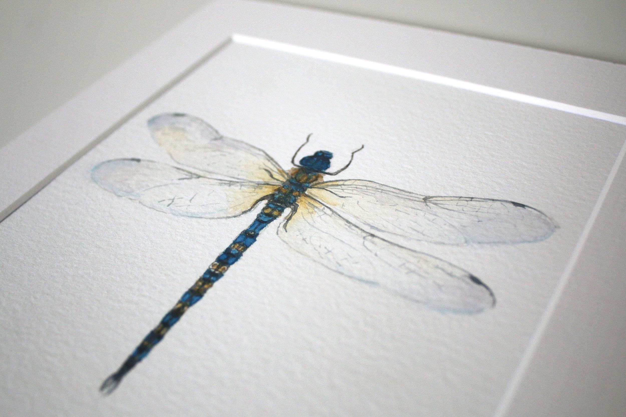 dragonfly r3.jpg