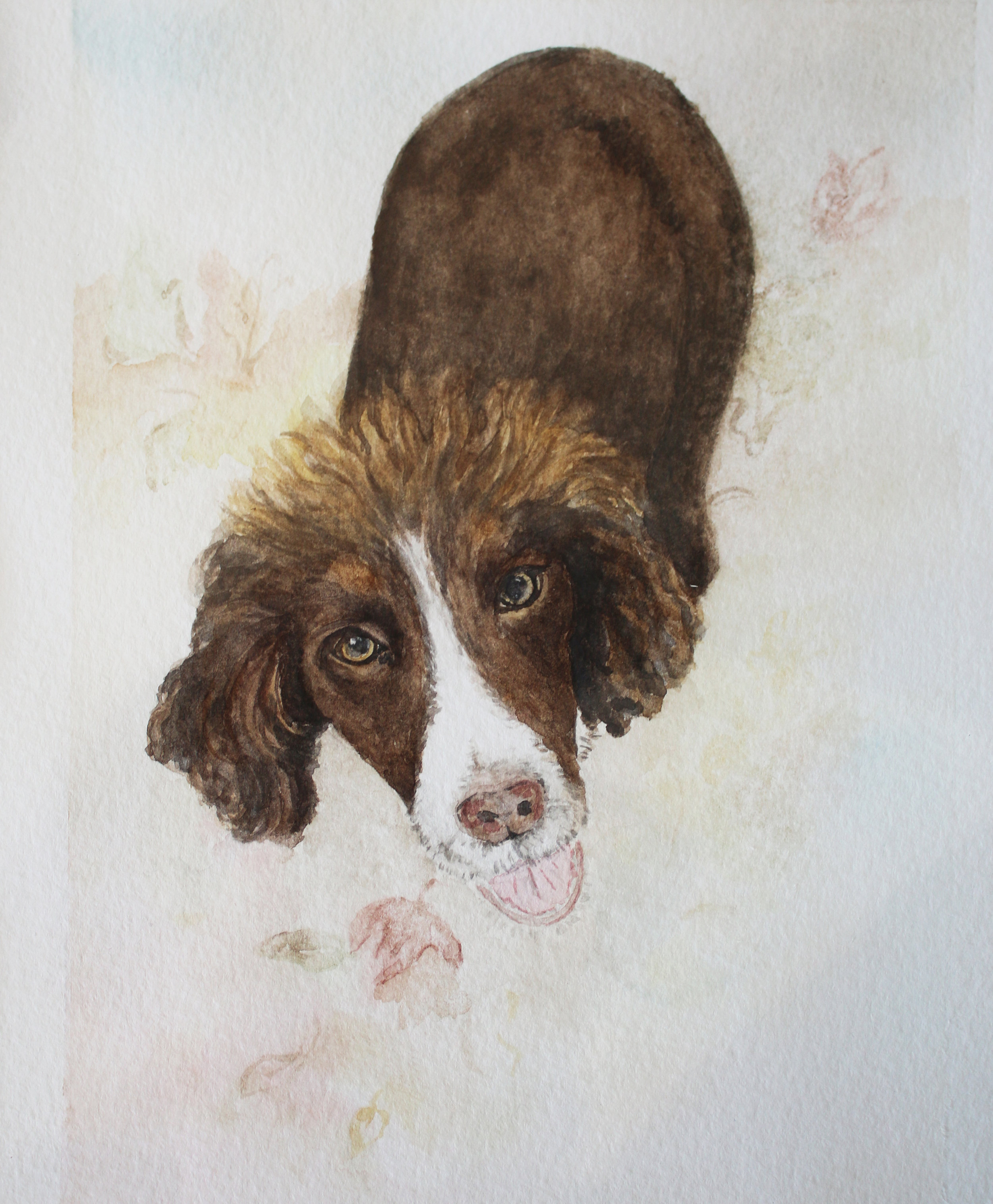 Pet Portrait 2.jpg