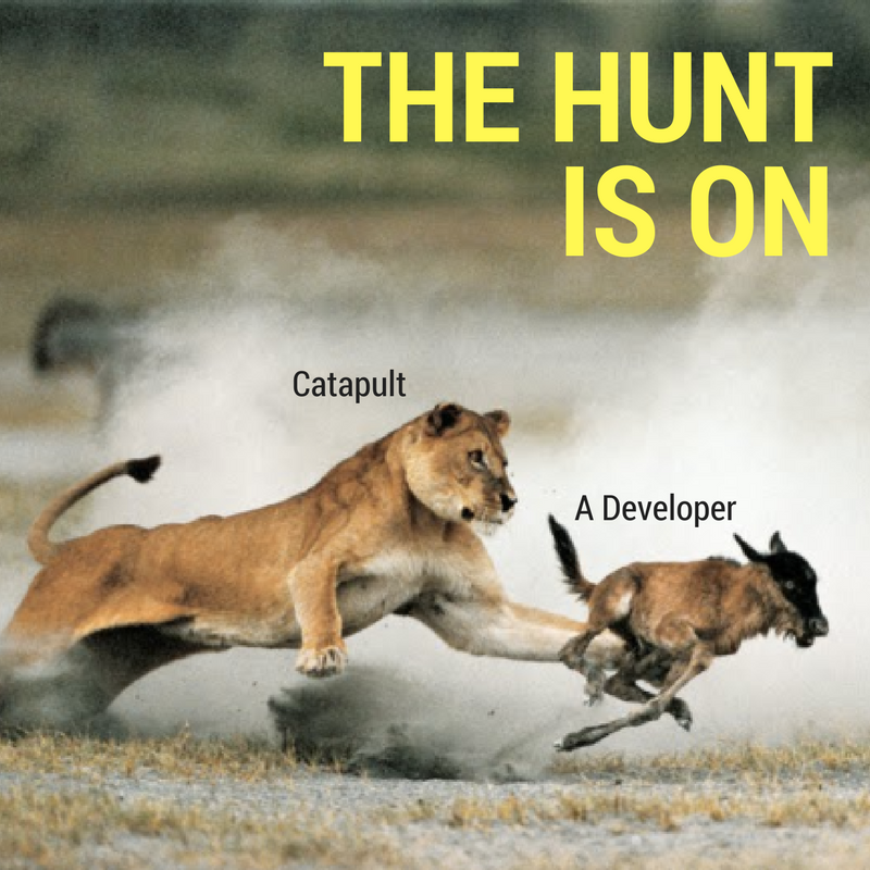 Jobpost_developer_hunt.png