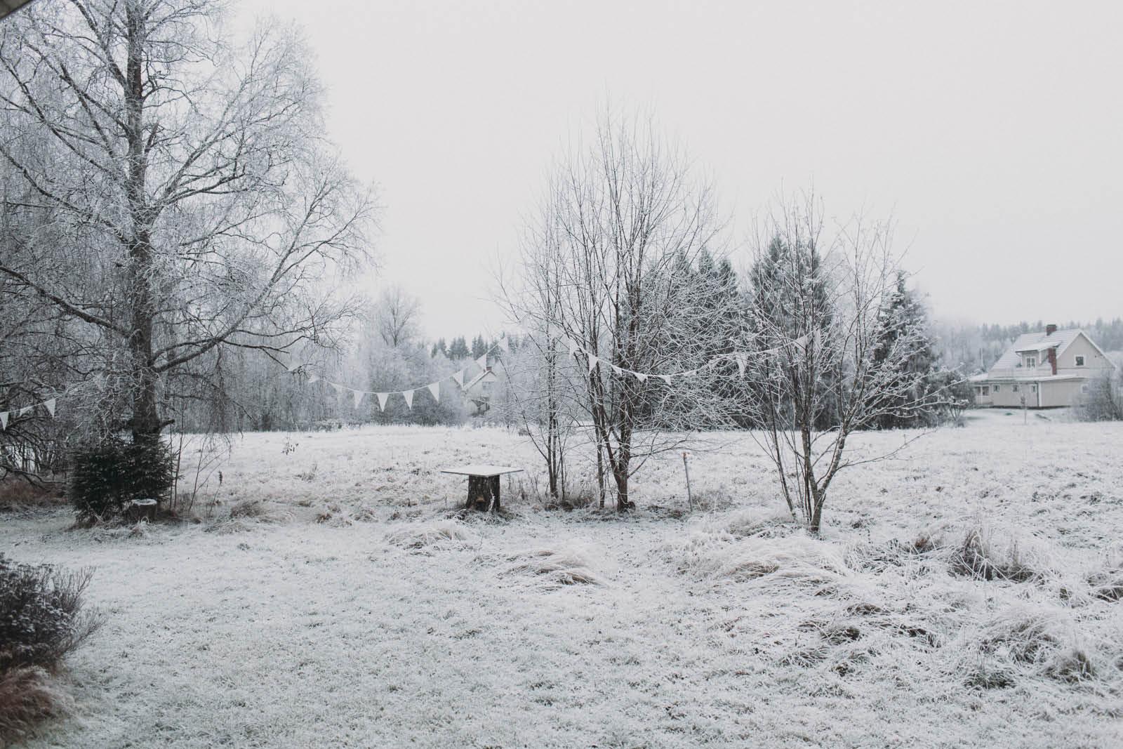 Sweden_roadtrip_Evabloem-022.jpg