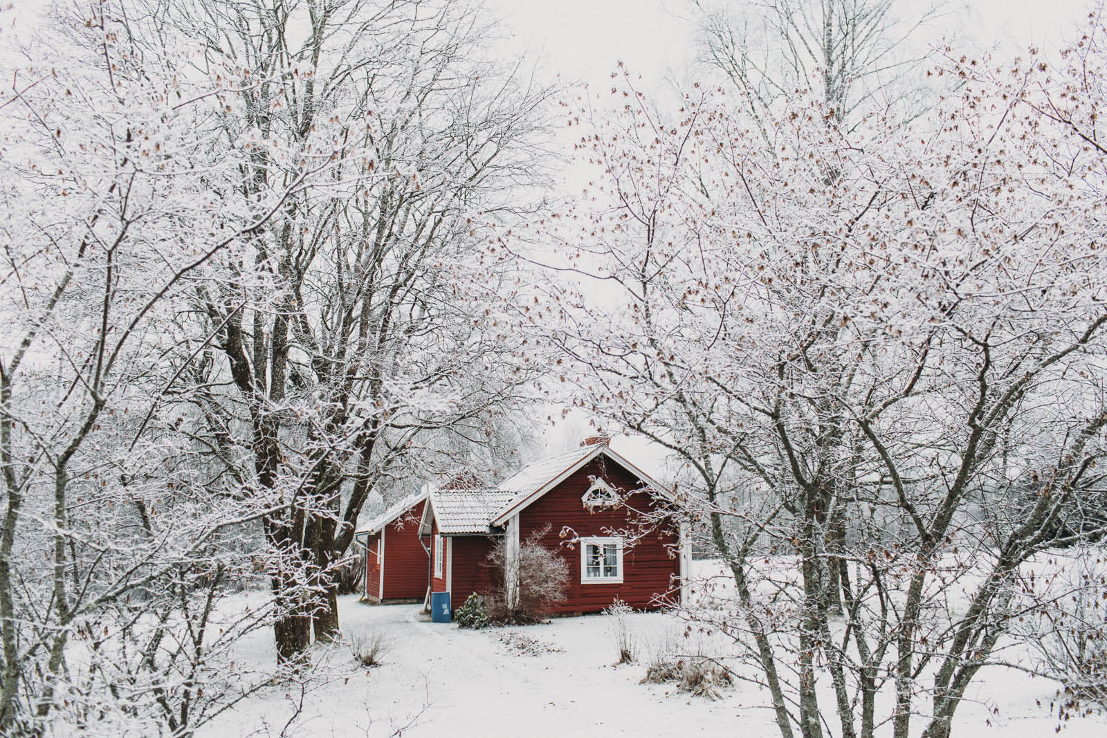 Sweden_roadtrip_Evabloem-051.jpg