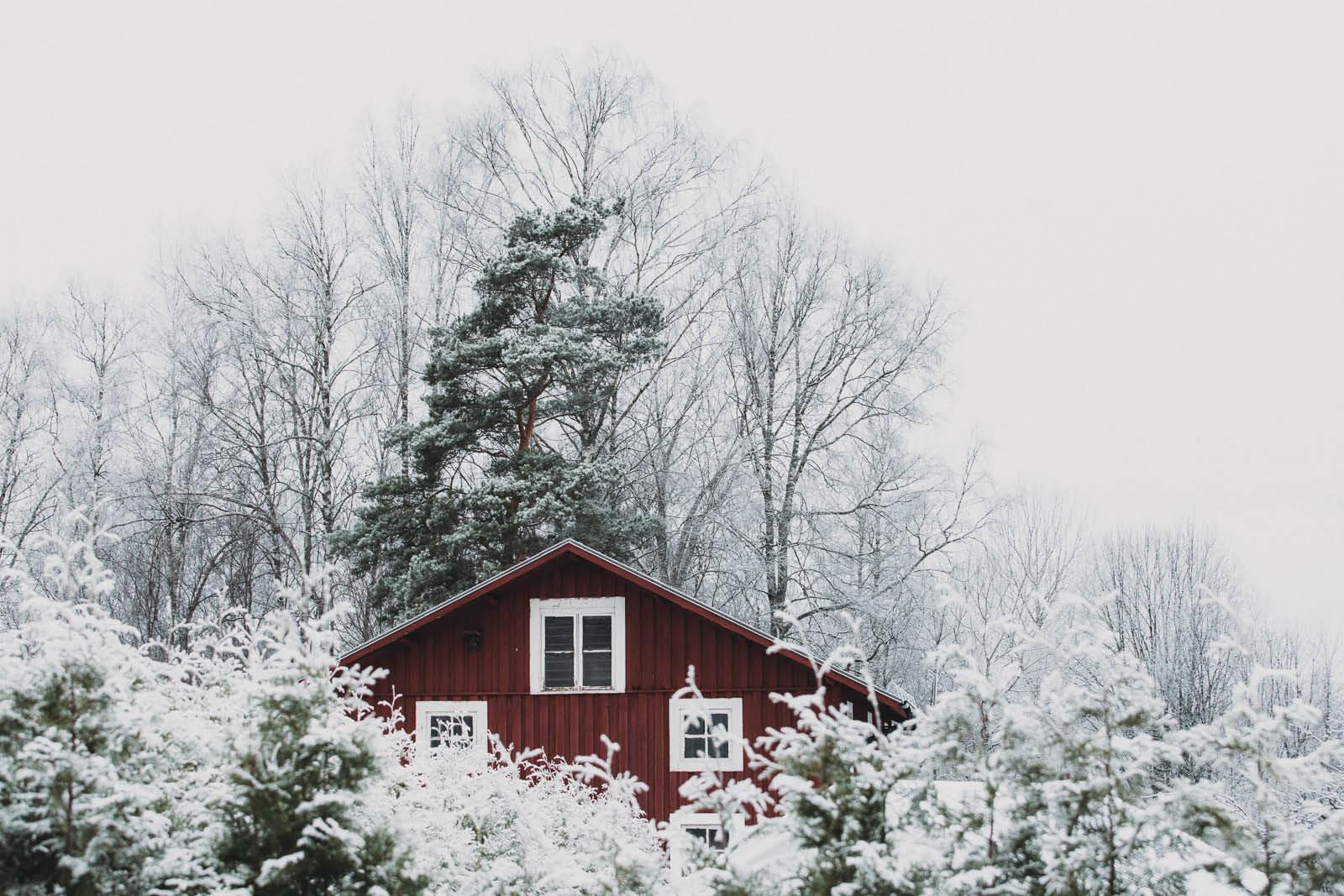 Sweden_roadtrip_Evabloem-053.jpg
