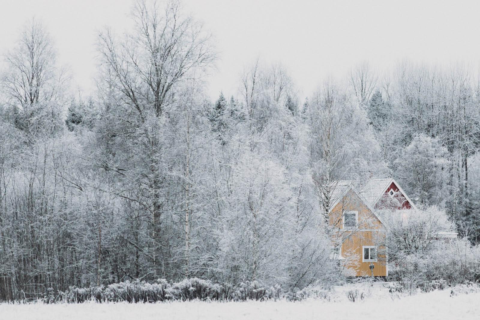 Sweden_roadtrip_Evabloem-061.jpg