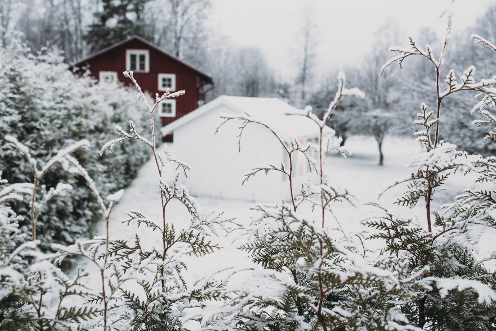 Sweden_roadtrip_Evabloem-060.jpg