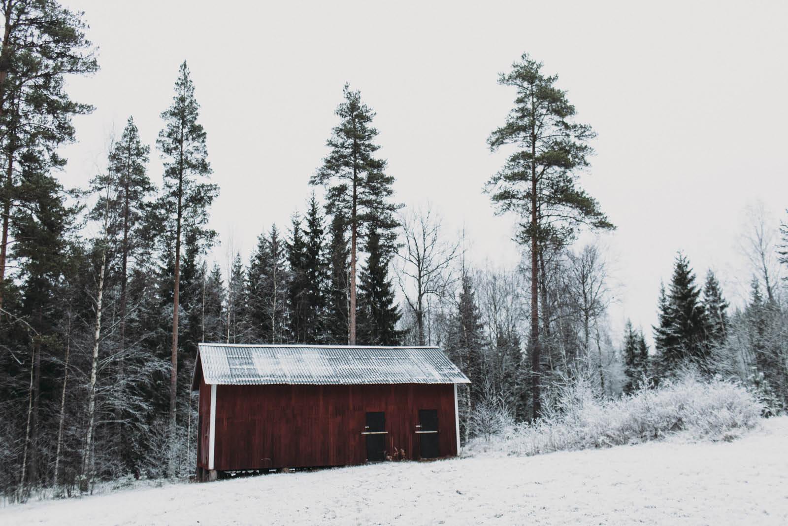 Sweden_roadtrip_Evabloem-081.jpg