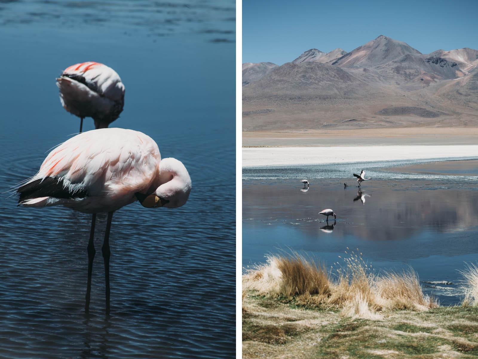 Evabloem-Salar-de-Uyuni_Bolivia-0094-2.jpg