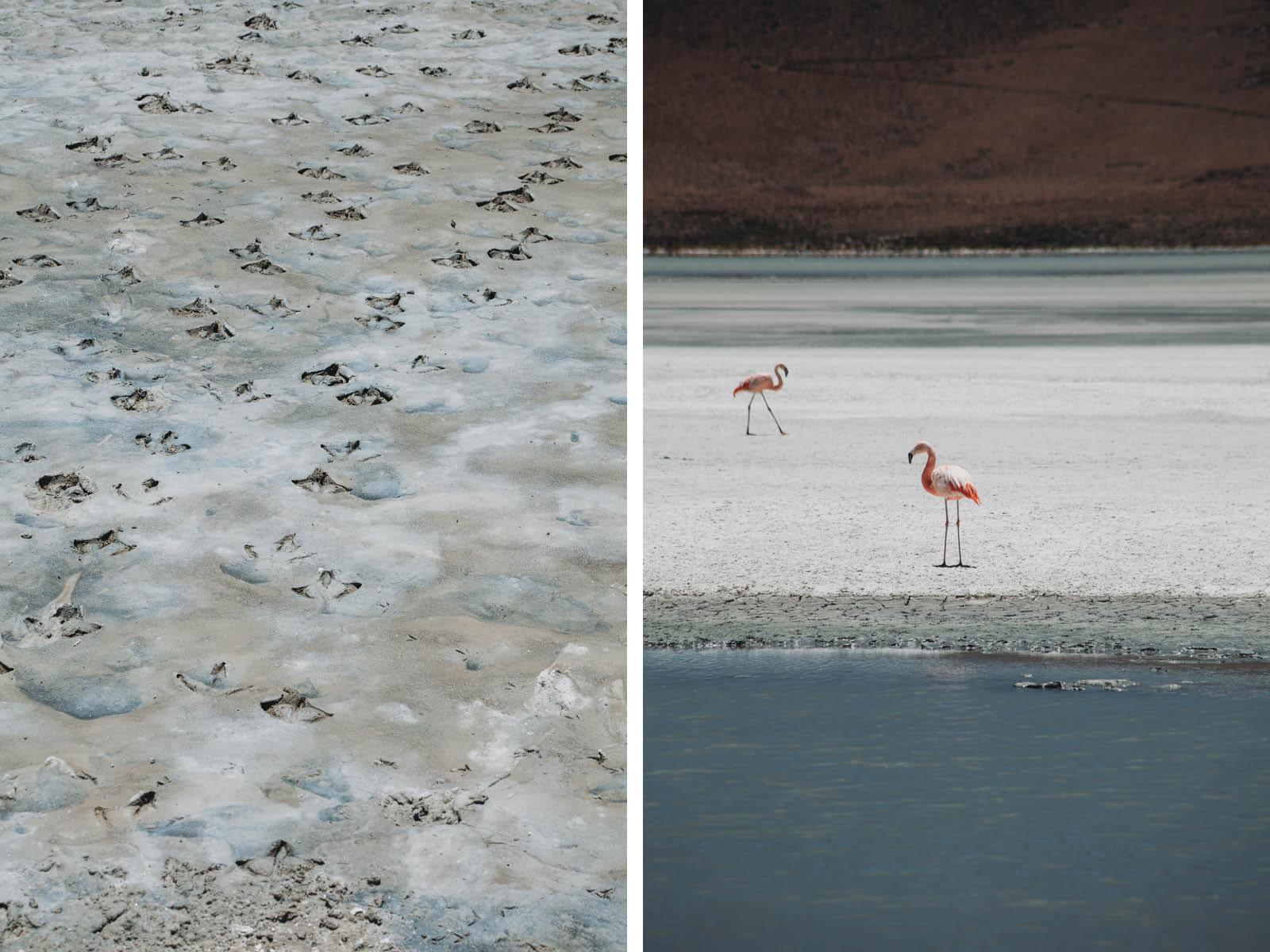 Evabloem-Salar-de-Uyuni_Bolivia-0104-2.jpg