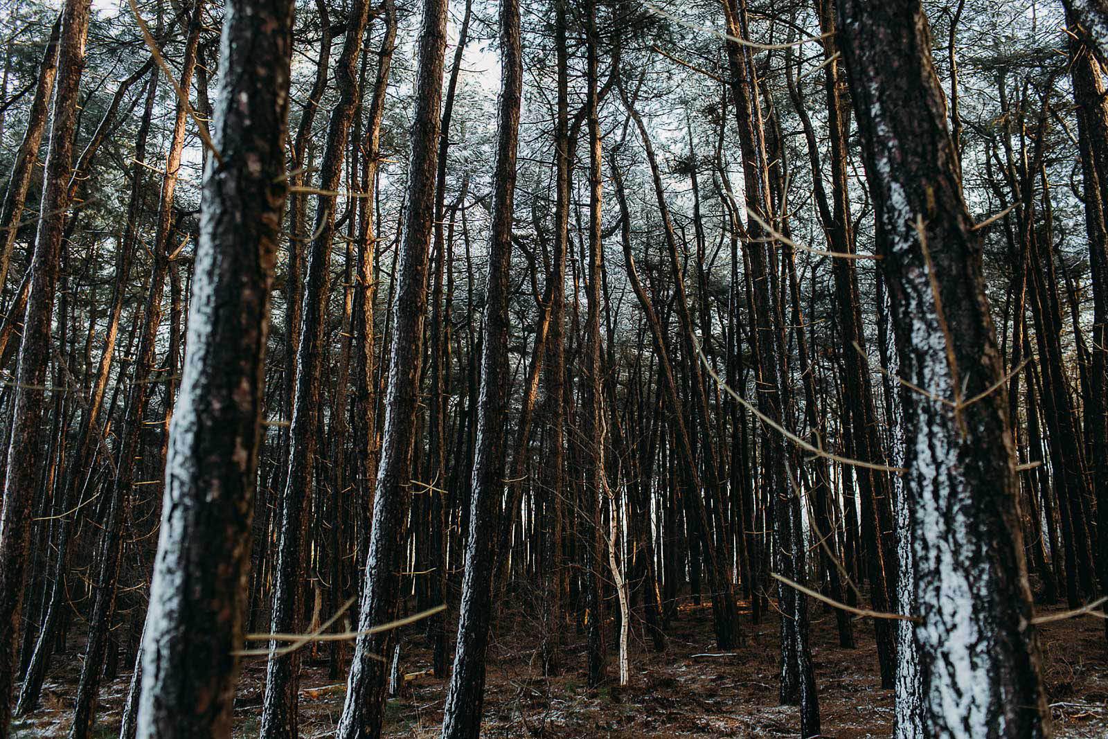 Evabloemweddings_bruidsfotografie_winterbruiloft_048.jpg