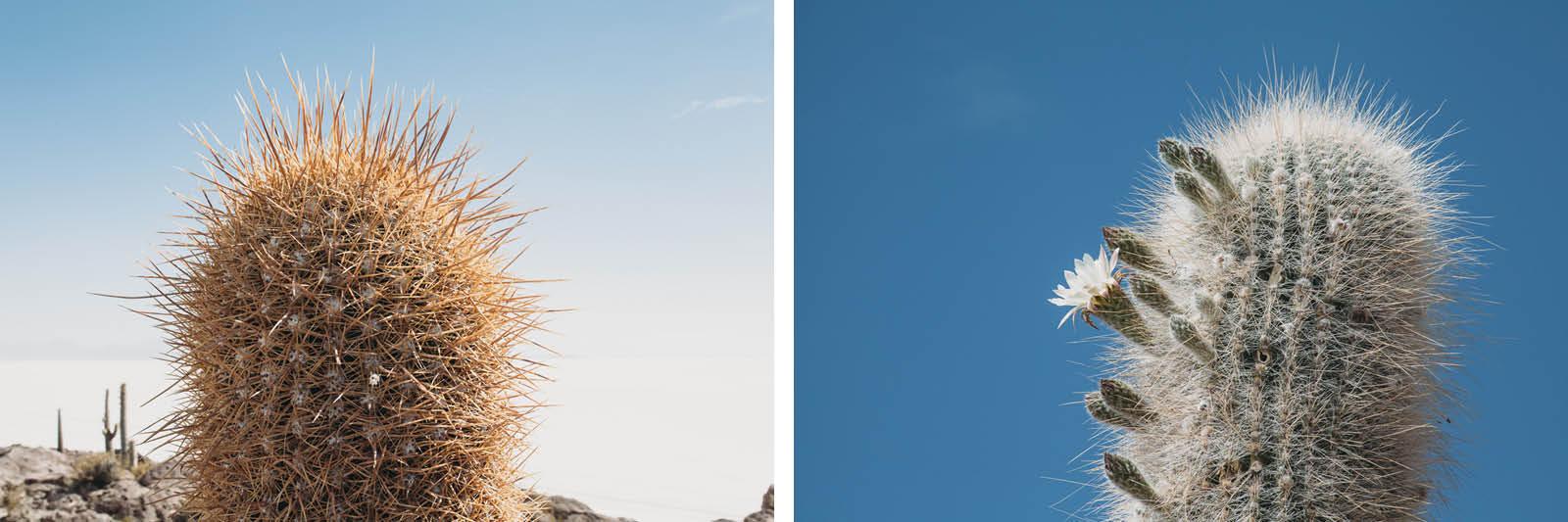 Evabloem-Salar-de-Uyuni_Bolivia-00018.jpg