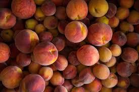 peach collection.jpeg