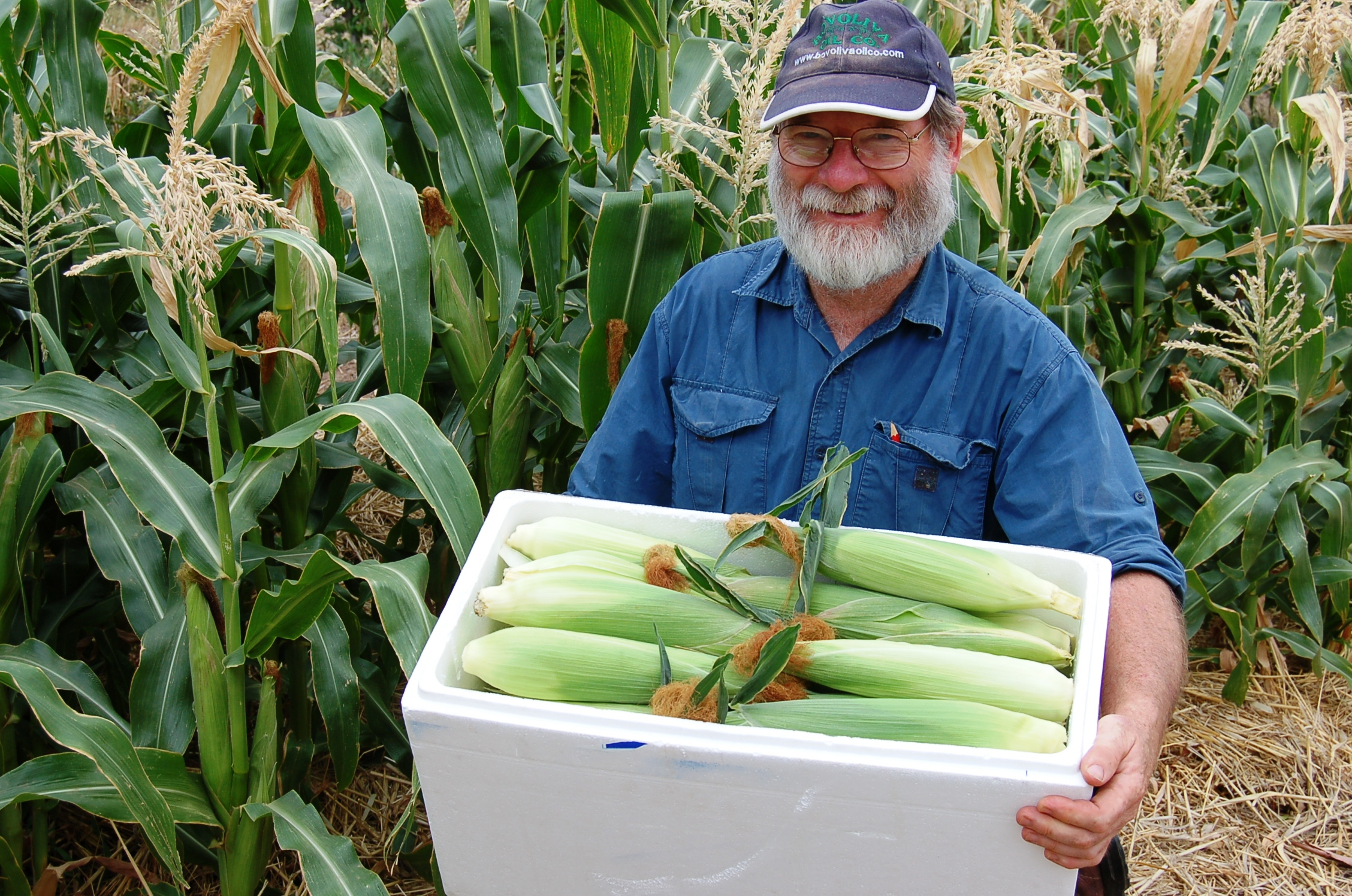 Graham brookman with corn harvested at his permaculture farm at The Food Forest  Source Graham Brookman.JPG